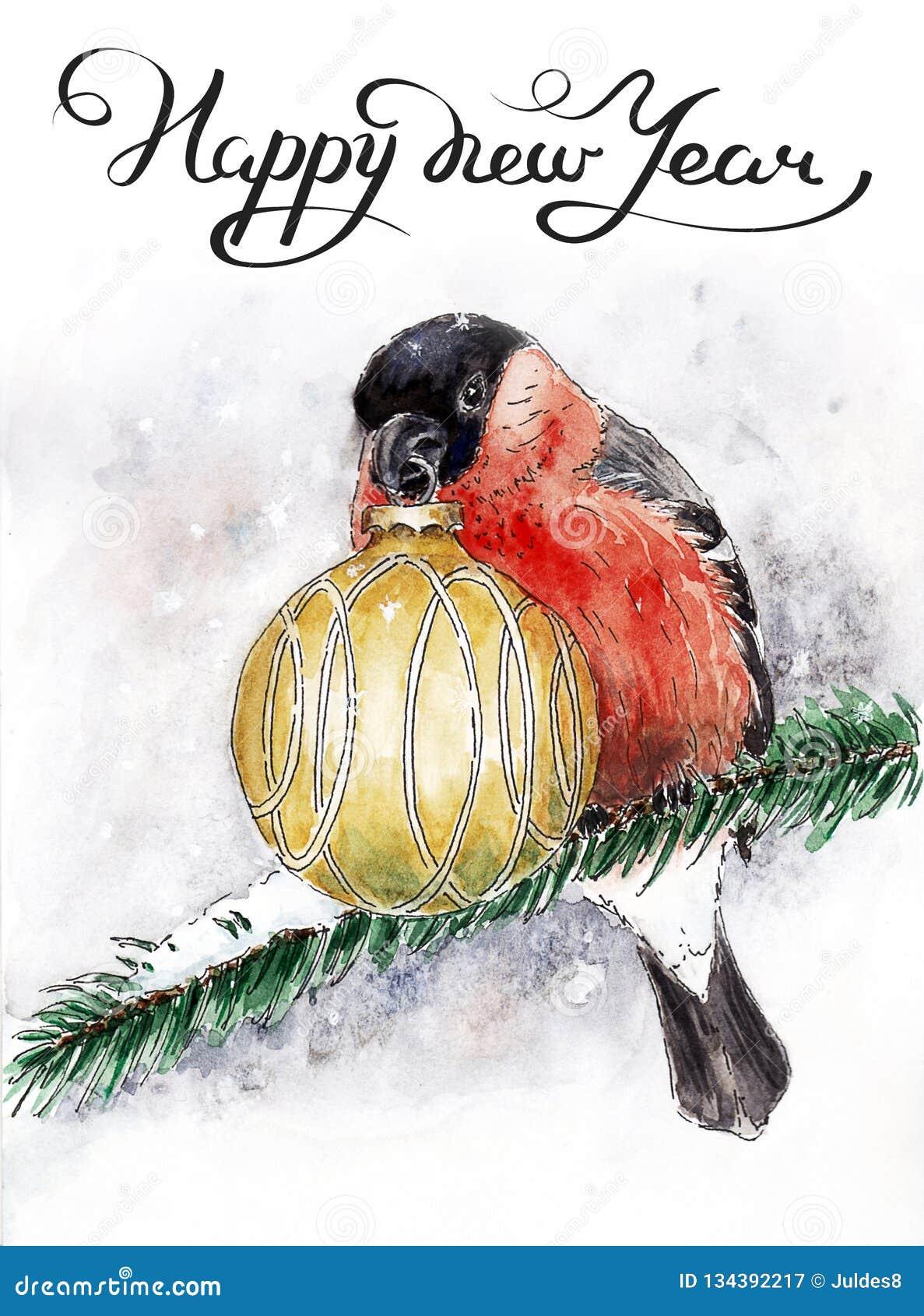 与红腹灰雀的圣诞卡