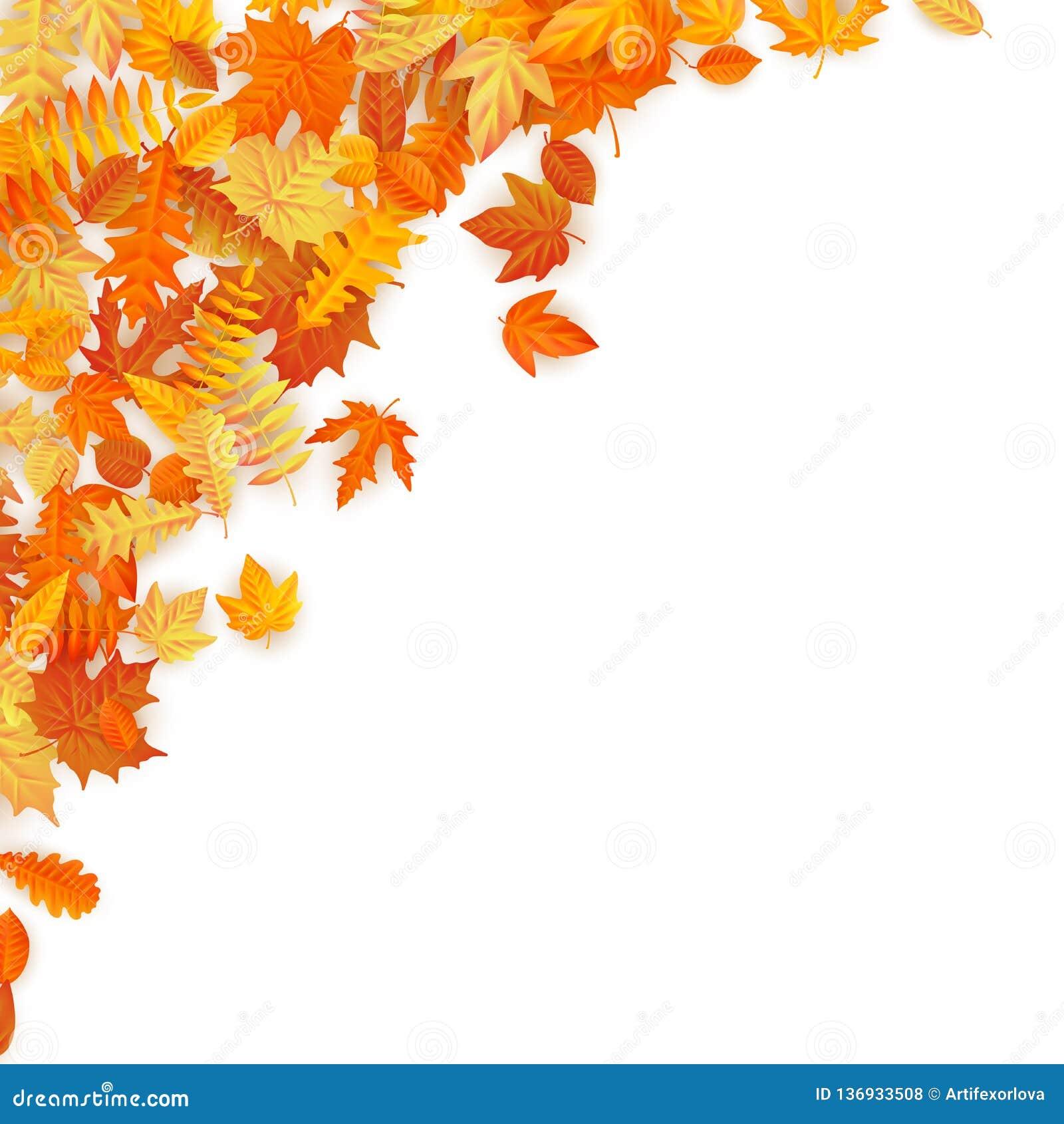 与红色,橙色,棕色和黄色落的秋叶的框架 10 eps