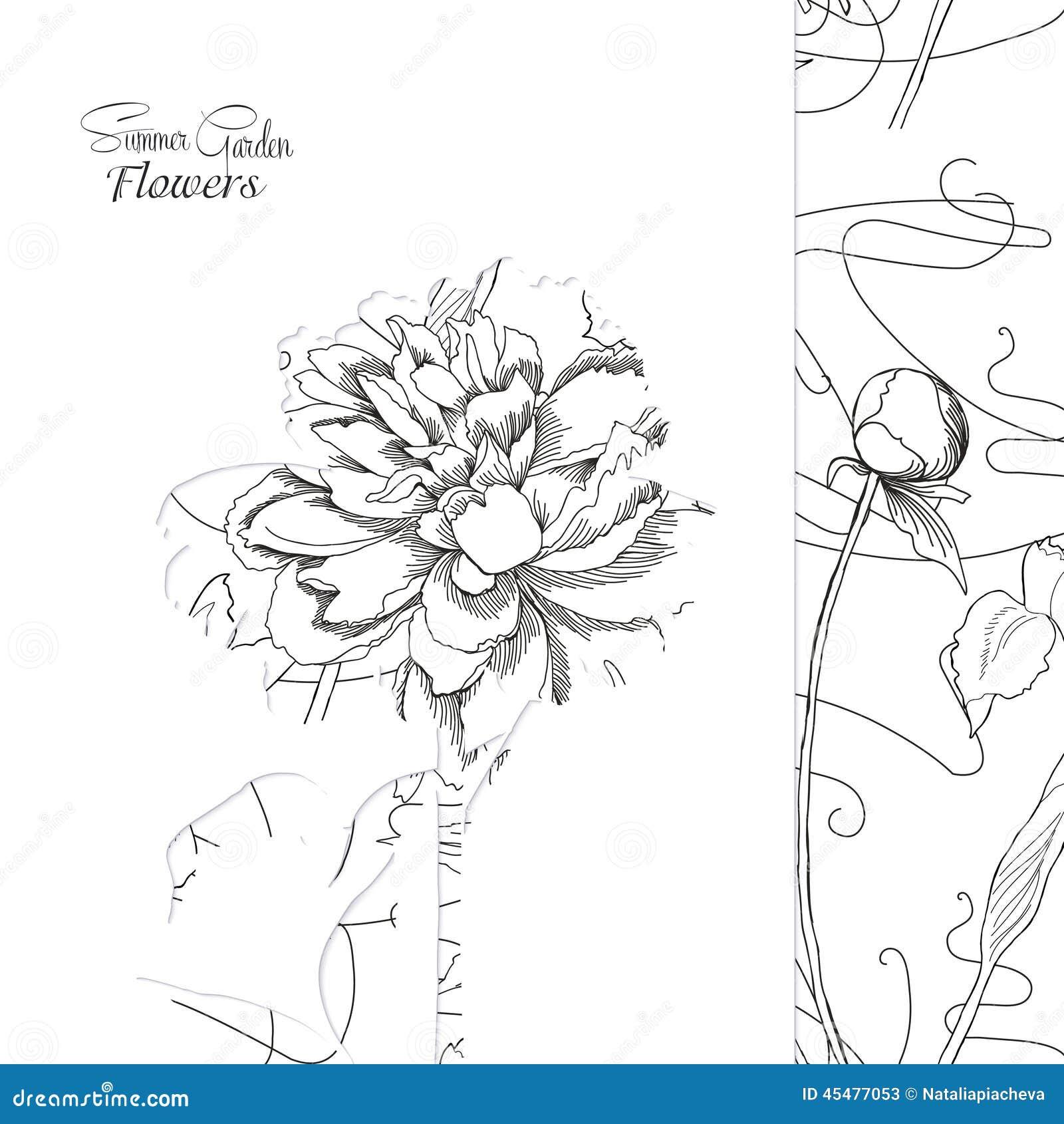 与纸牡丹花的背景