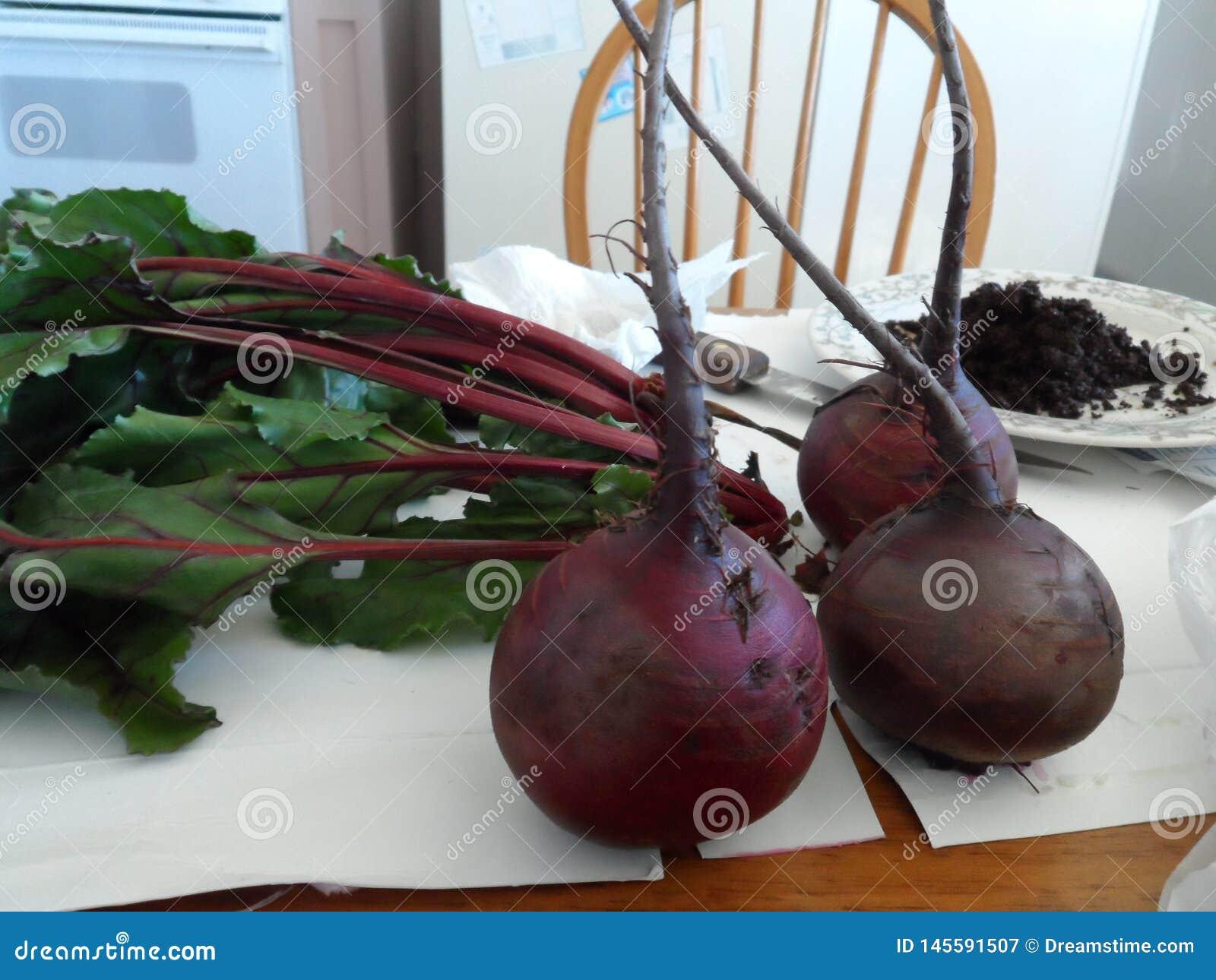 与绿色上面的红色甜菜在厨房里坐
