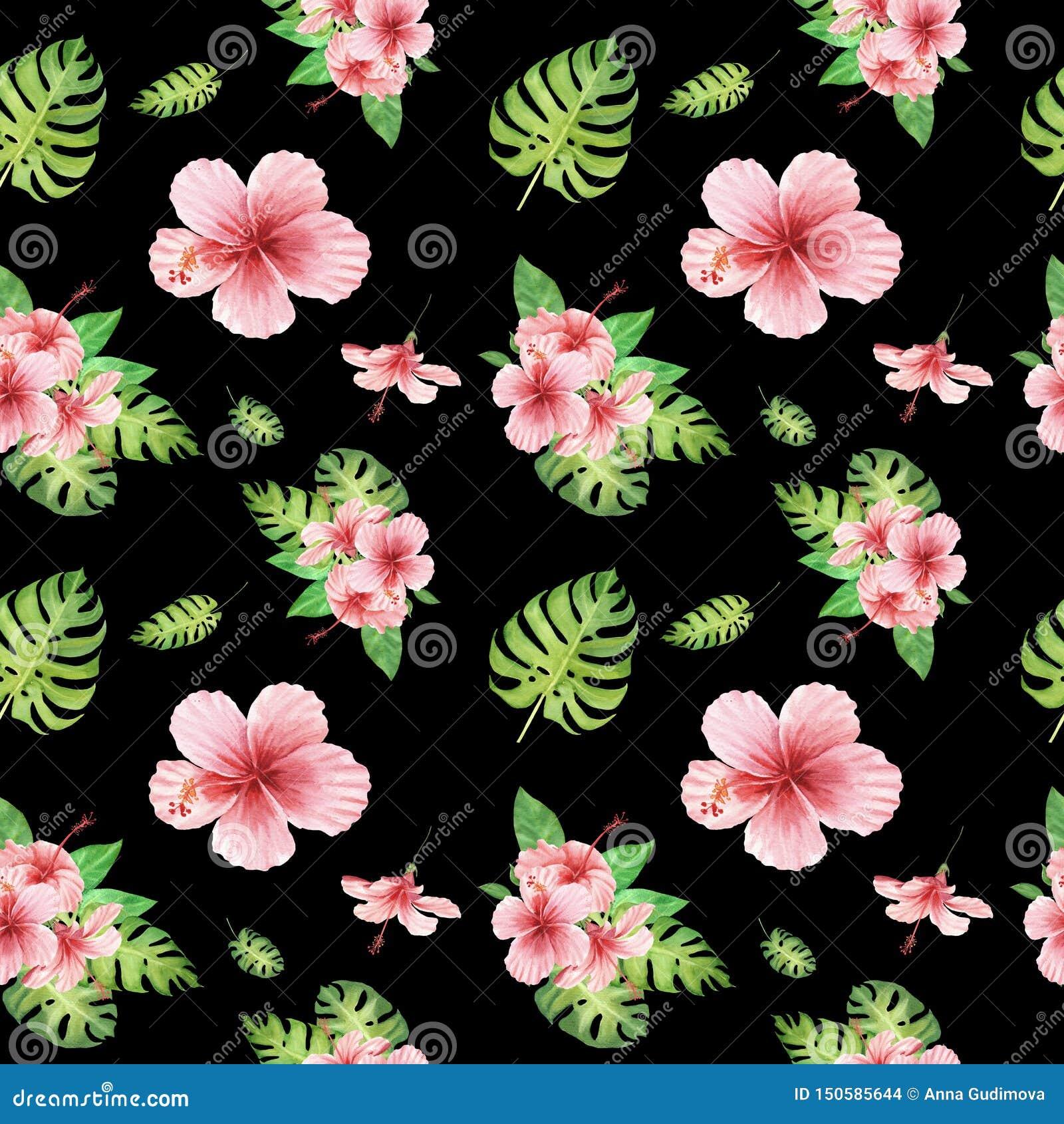 与绿色monstera叶子和桃红色木槿花的水彩花卉热带无缝的样式在黑色