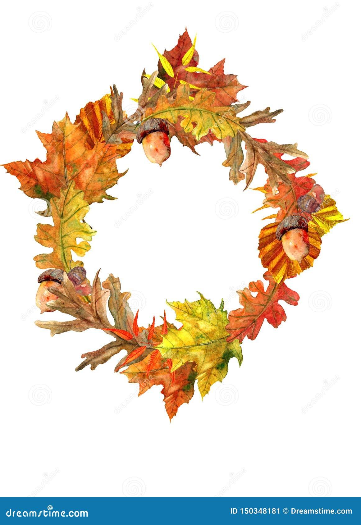 与美丽的叶子的秋天花圈