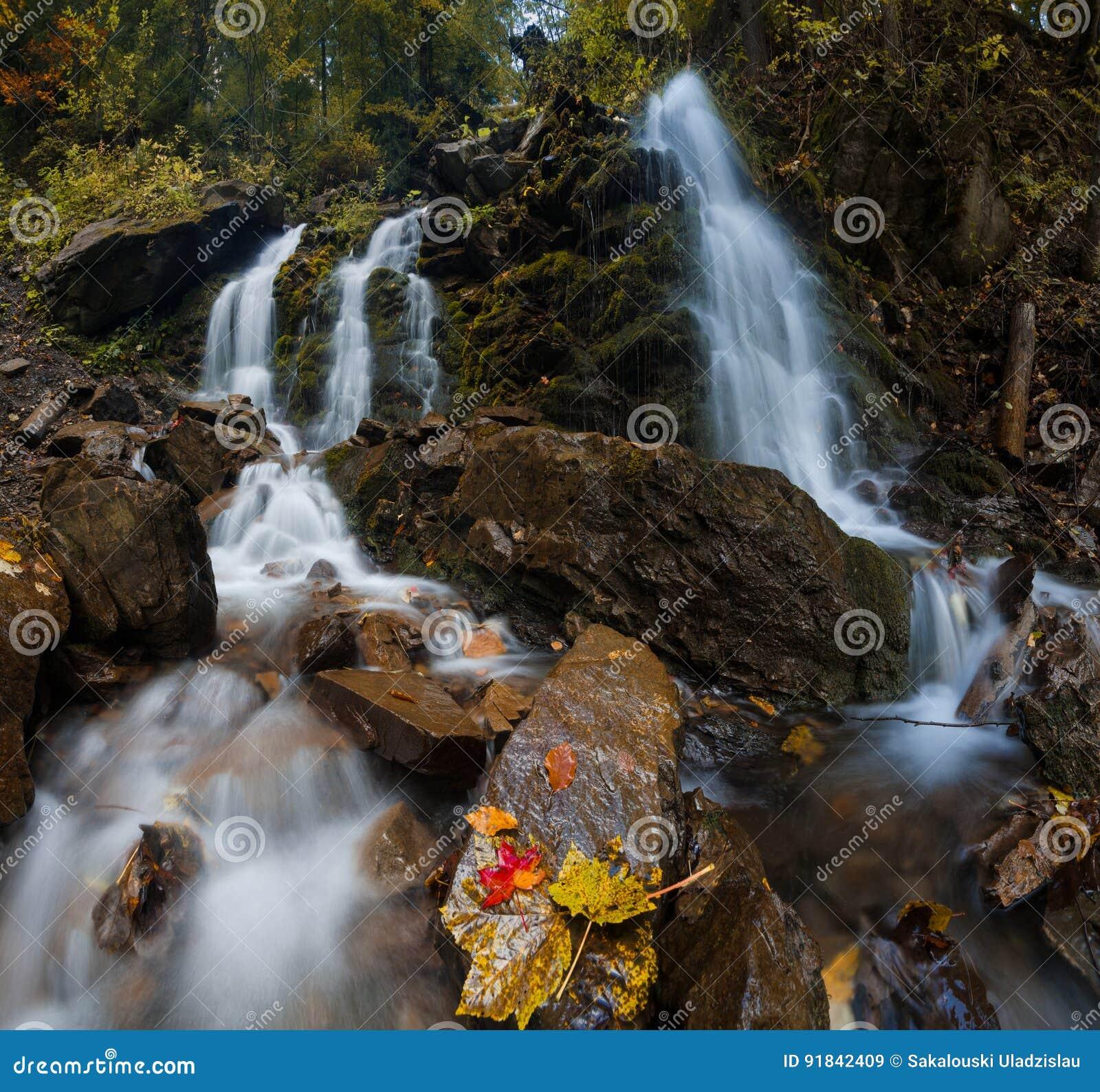 与美丽的瀑布的五颜六色的有薄雾的秋天风景在山河在有红色和黄色叶子的森林里