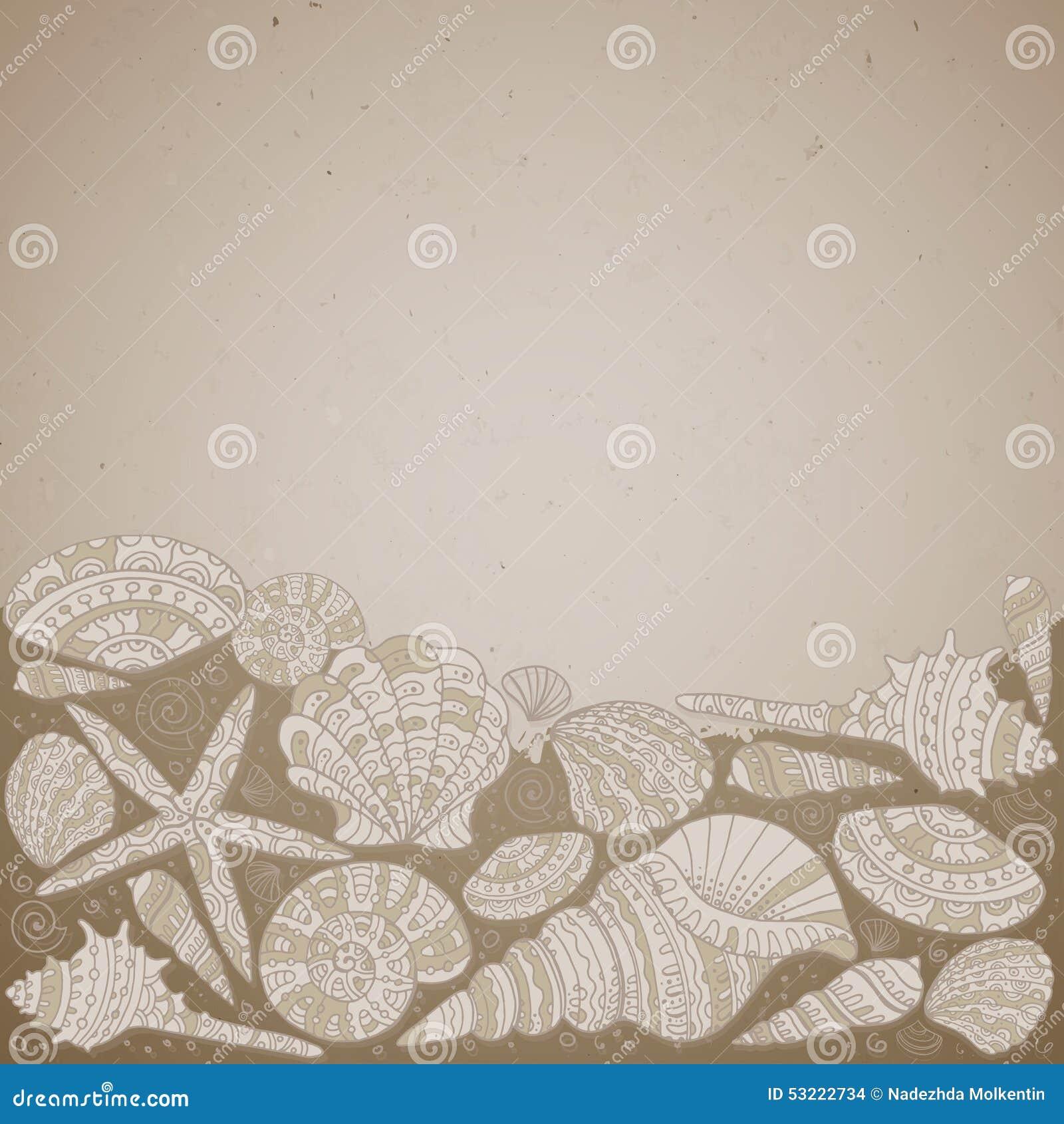 与美丽的贝壳的传染媒介装饰背景
