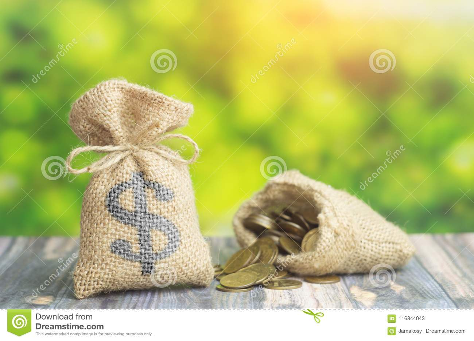 与美元的符号的金钱与硬币的袋子和袋子在绿色背景 贷款或企业财务的概念