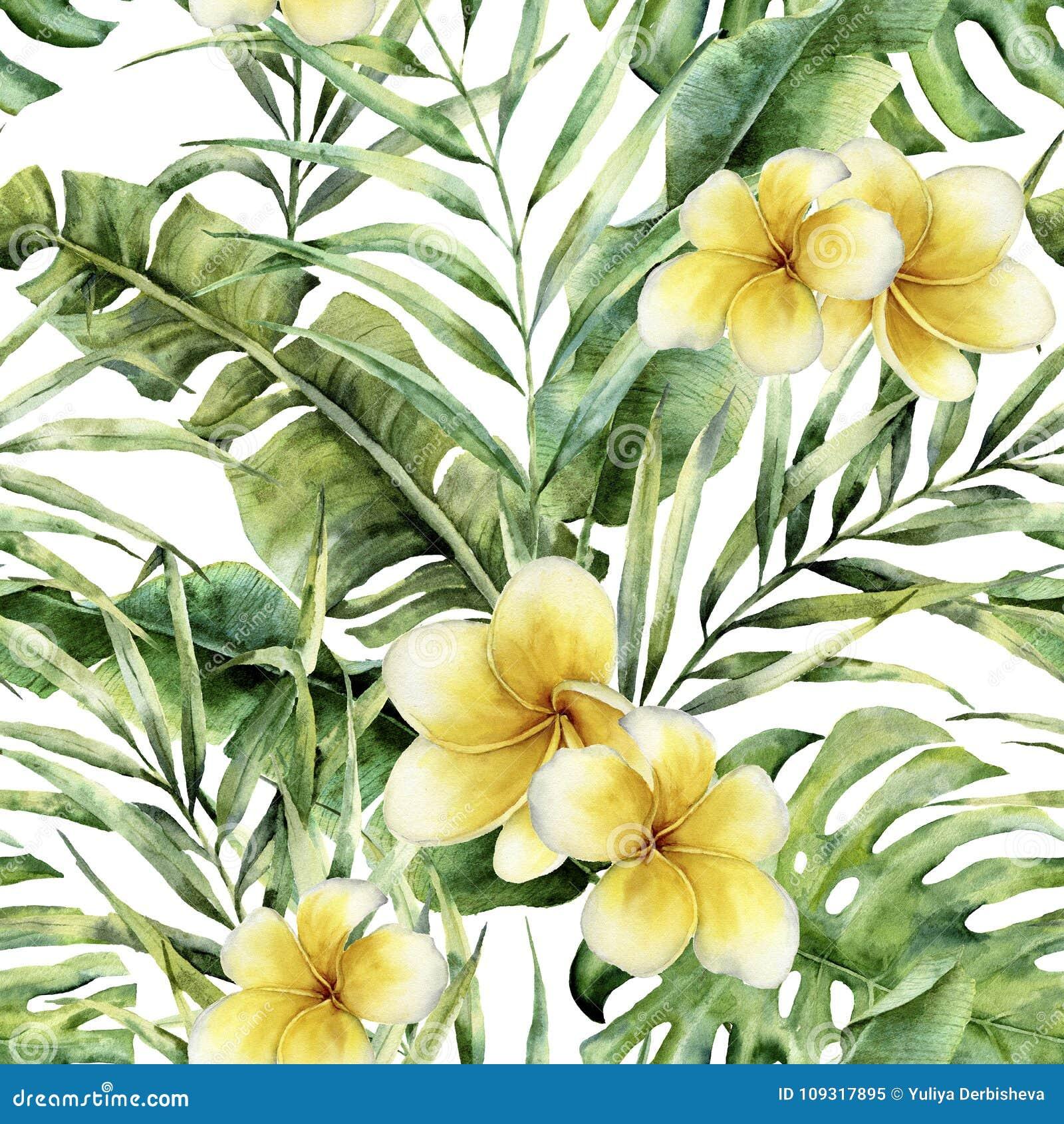与羽毛的水彩样式,棕榈树离开 手画异乎寻常的绿叶分支 植物的例证 为