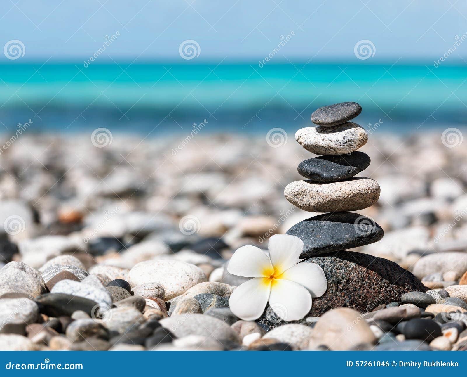与羽毛花的禅宗平衡的石头堆