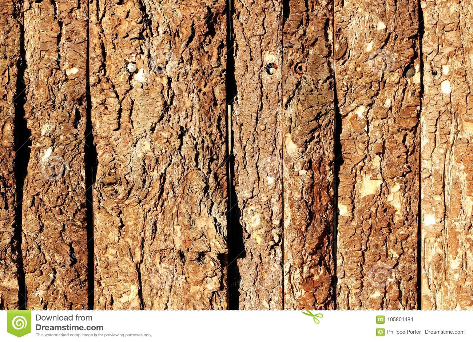 与老自然杉木吠声室外纹理的木门