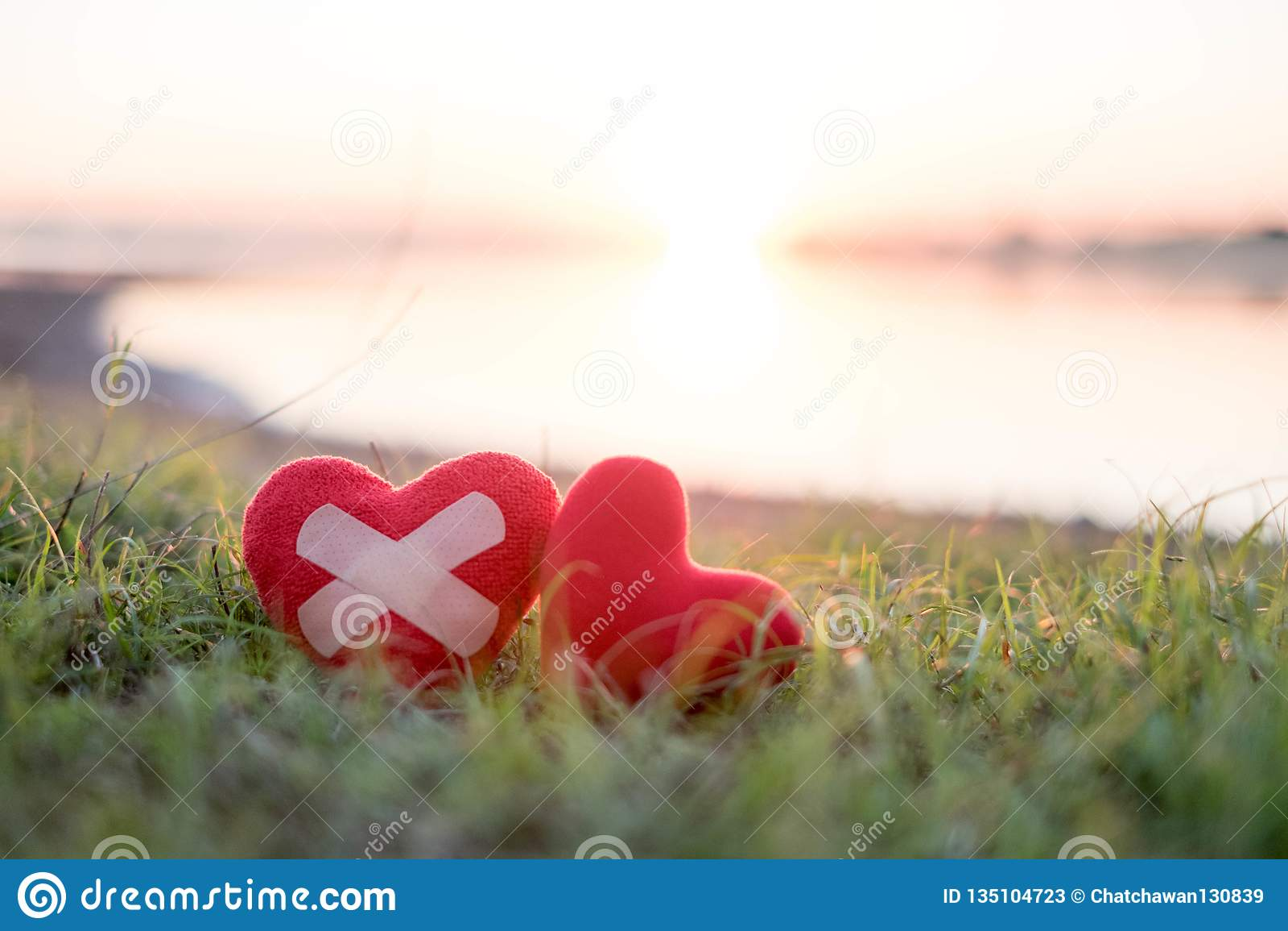 与膏药的心脏和红心在背景中,太阳落