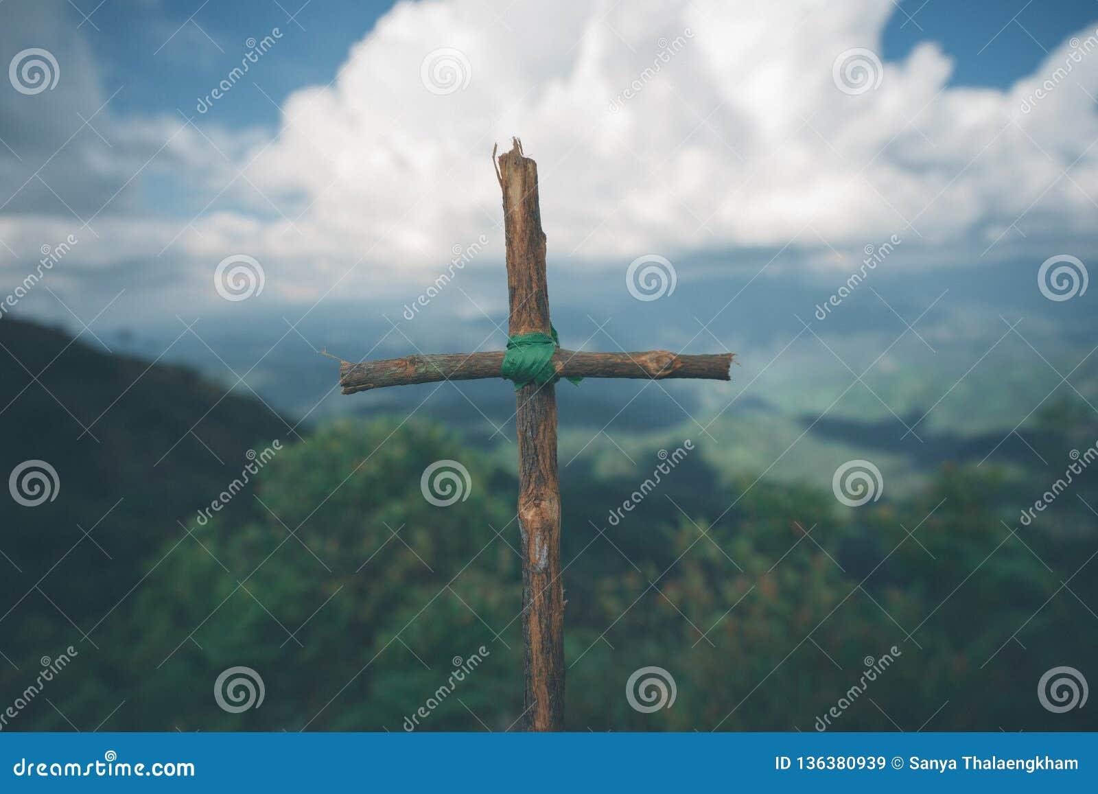 与自然的十字架在小山的森林是Blackground