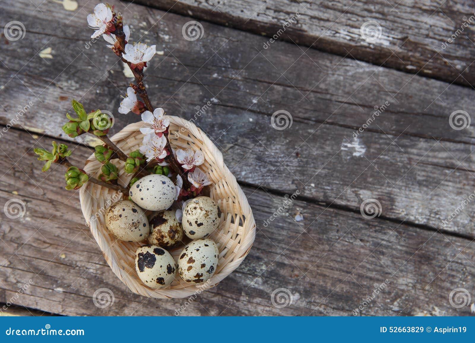 与花和鹌鹑蛋的复活节快乐