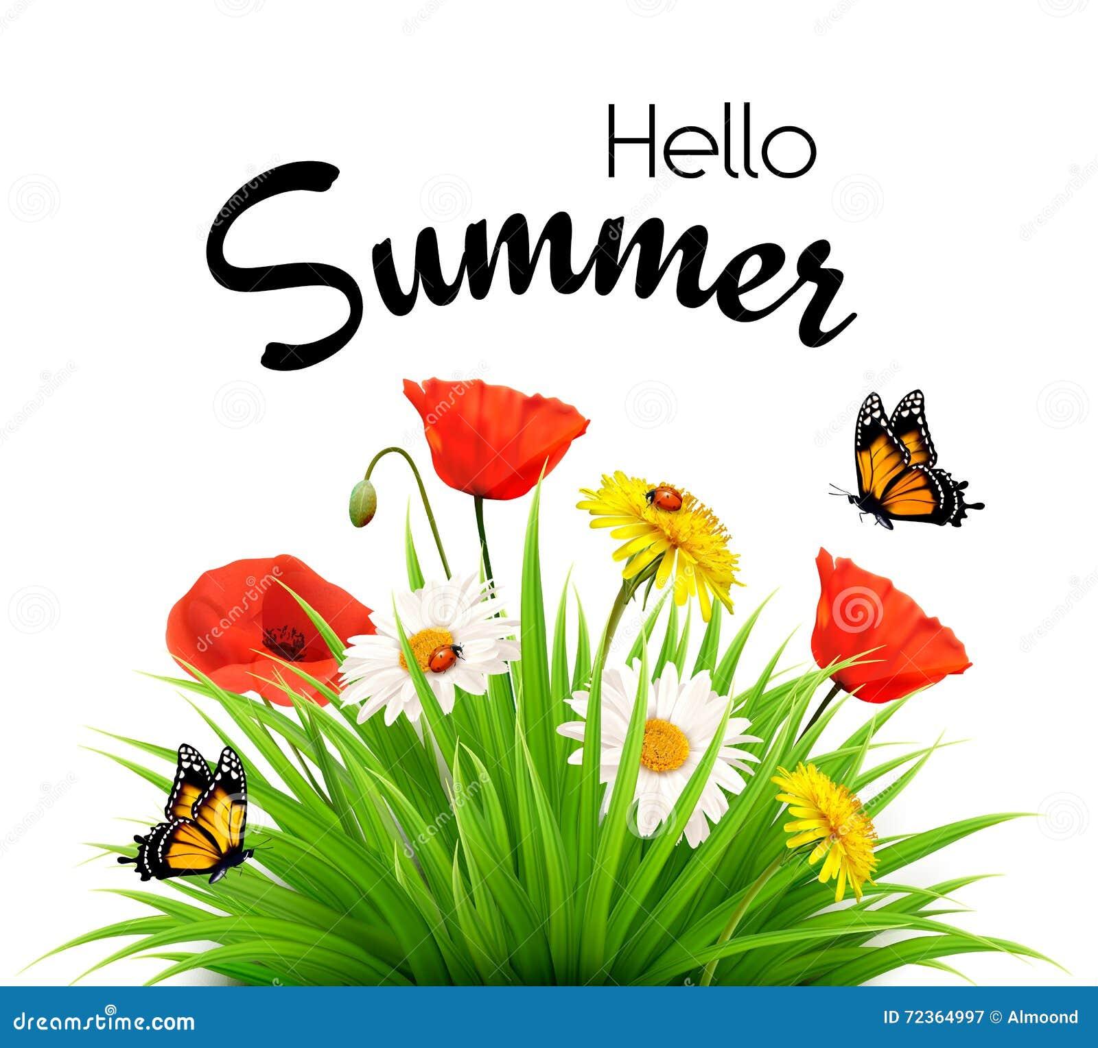 与花和蝴蝶的愉快的暑假背景