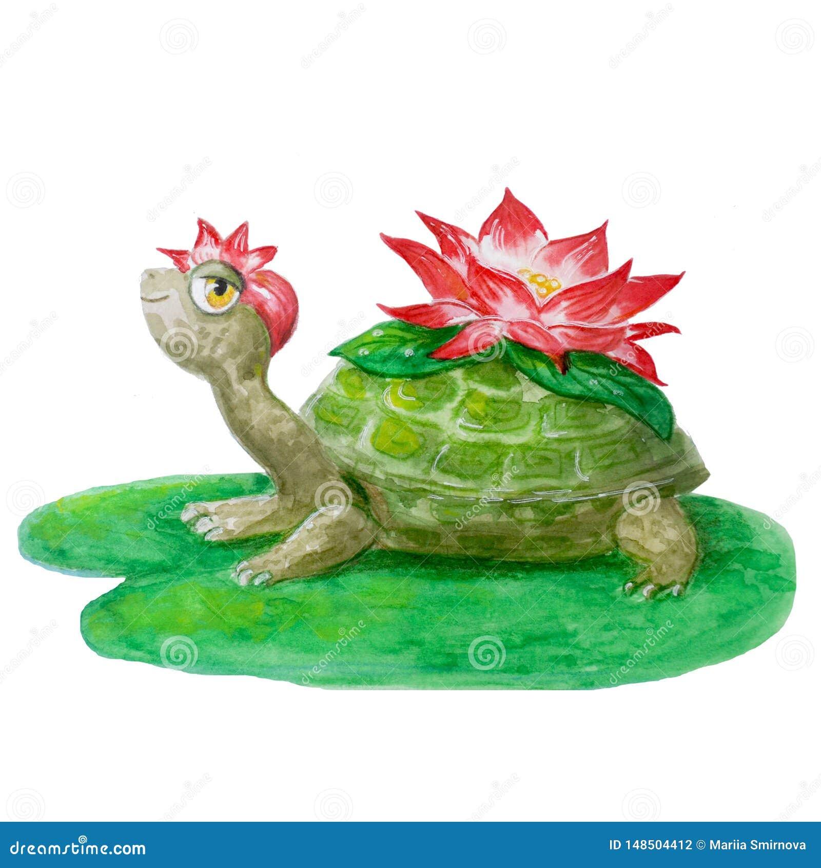 与花的快活的水彩乌龟 在儿童的设计的白色背景隔绝的手拉的微笑的动物
