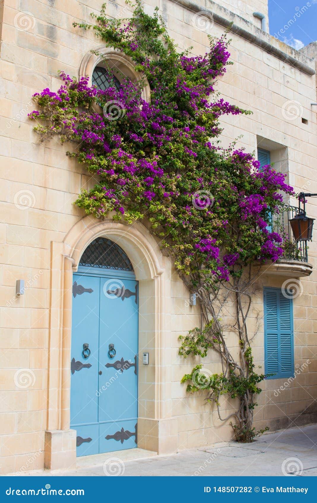 与花的蓝色门在马耳他