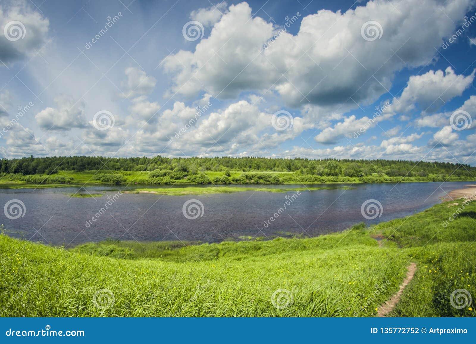 与草甸和森林的美好的风景河三角洲在一好日子