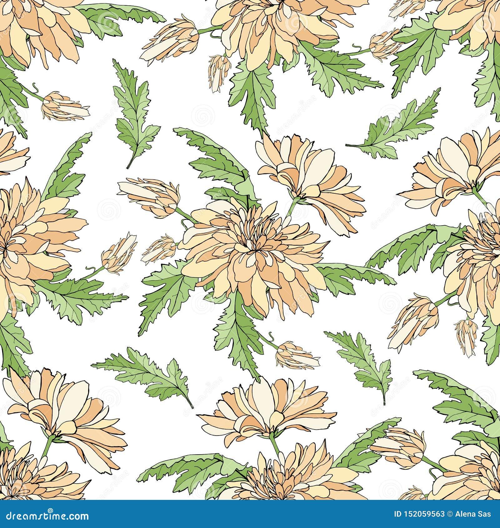 与菊花花束的无缝的样式  设计的不尽的纹理您的贺卡,织品设计,婚礼