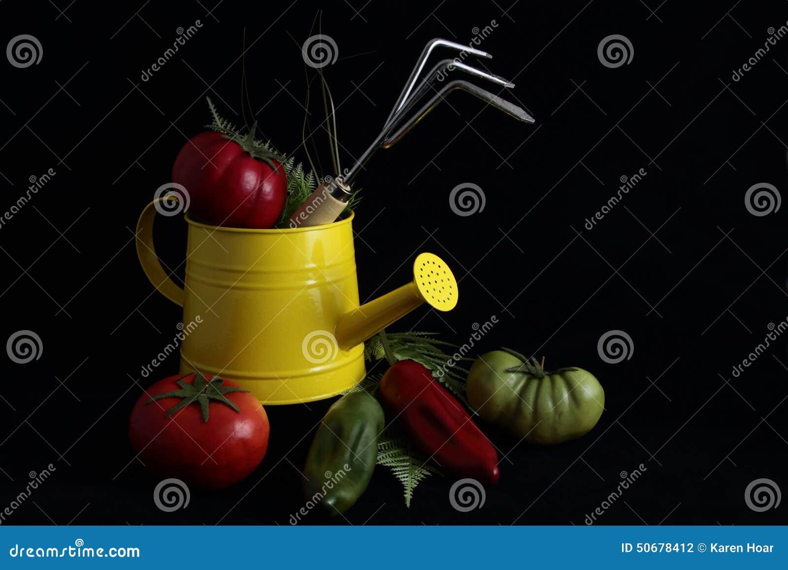 Download 与菜的从事园艺的静物画 库存照片. 图片 包括有 黑暗, 墨西哥胡椒, 摄影, 侧灯, 微弱光线, lit - 50678412