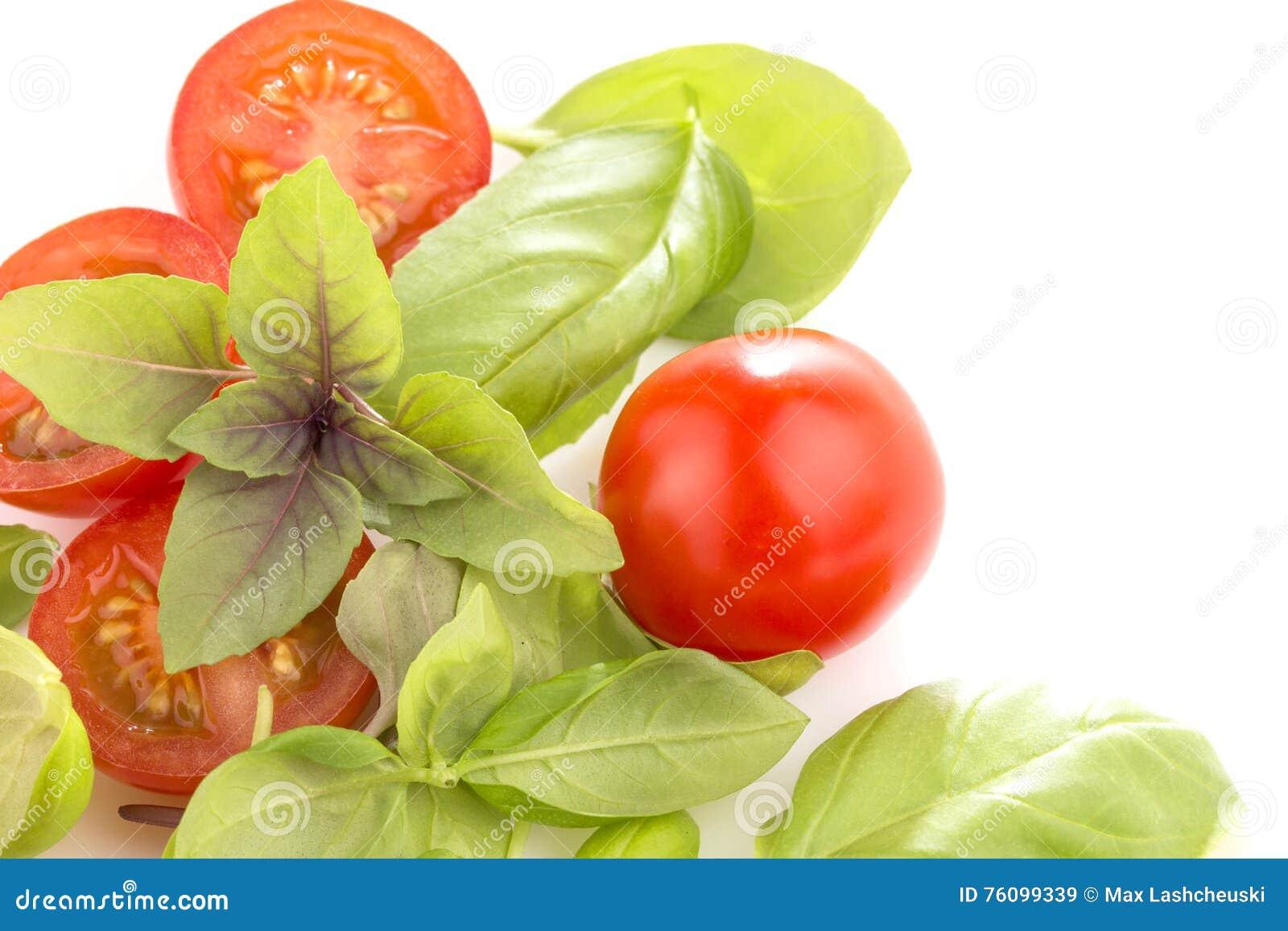 与蓬蒿的蕃茄在白色背景