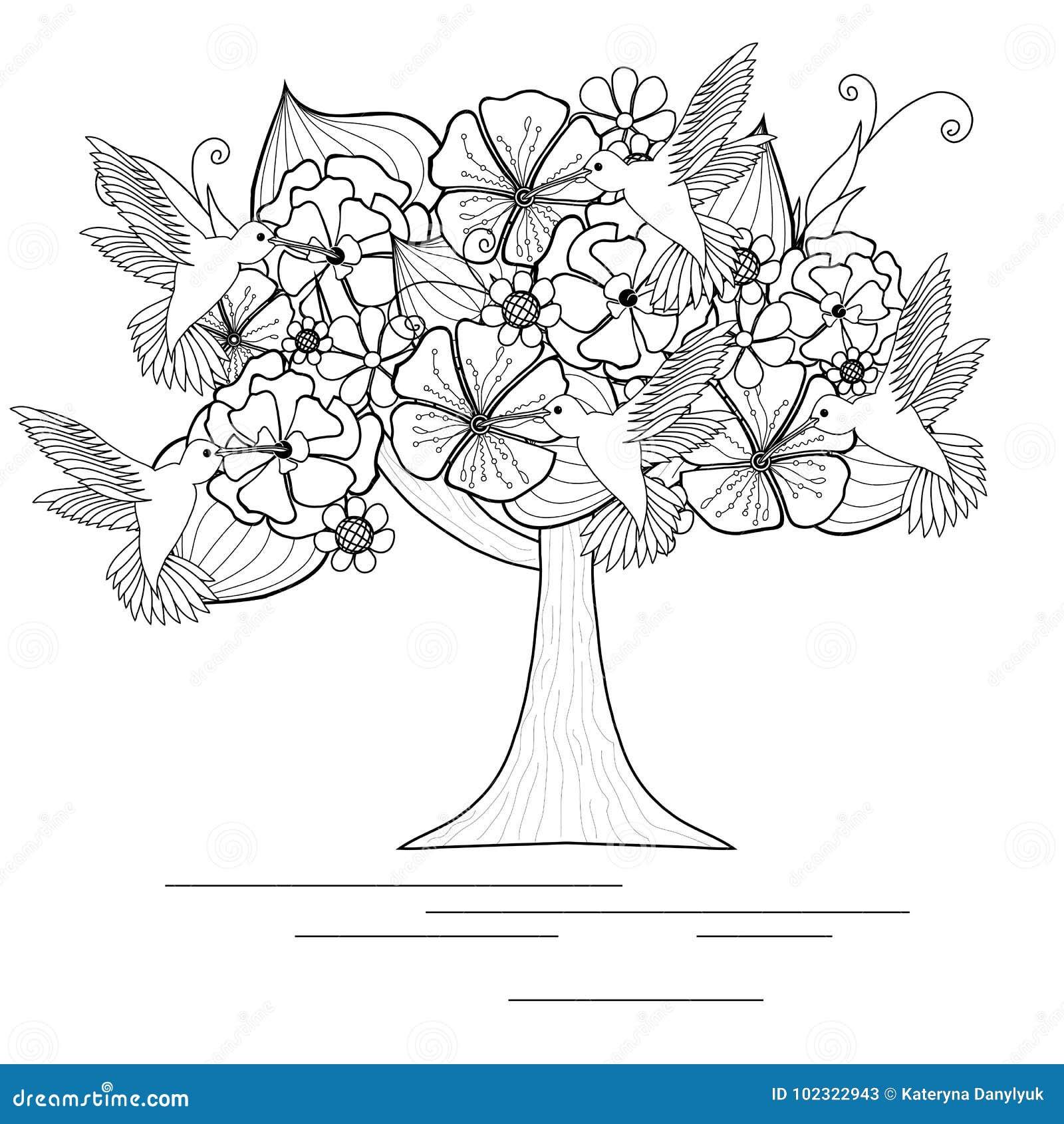 与蜂鸟的单色开花的树彩图的