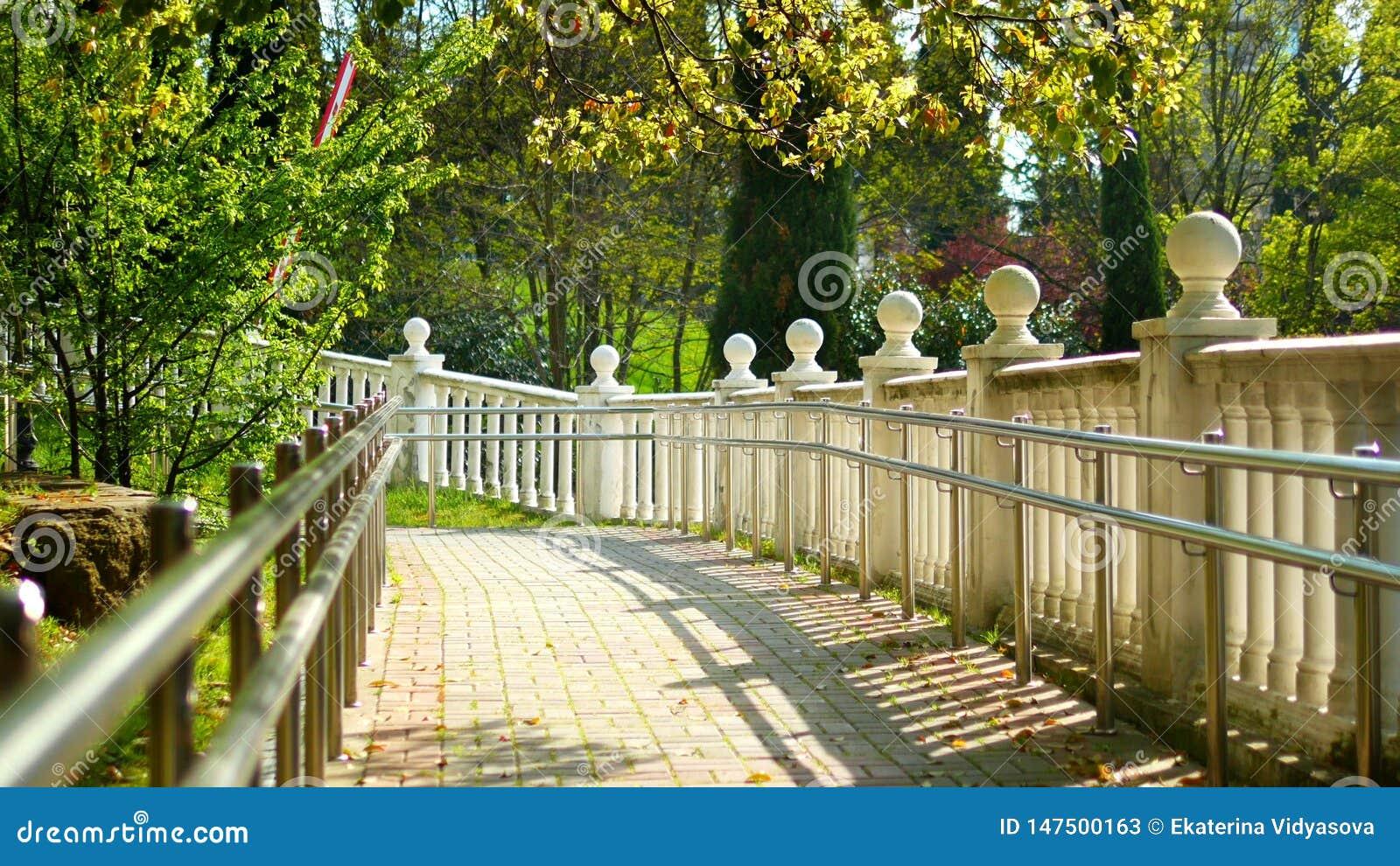 与装饰的白色楼梯栏杆从球在一个热带公园