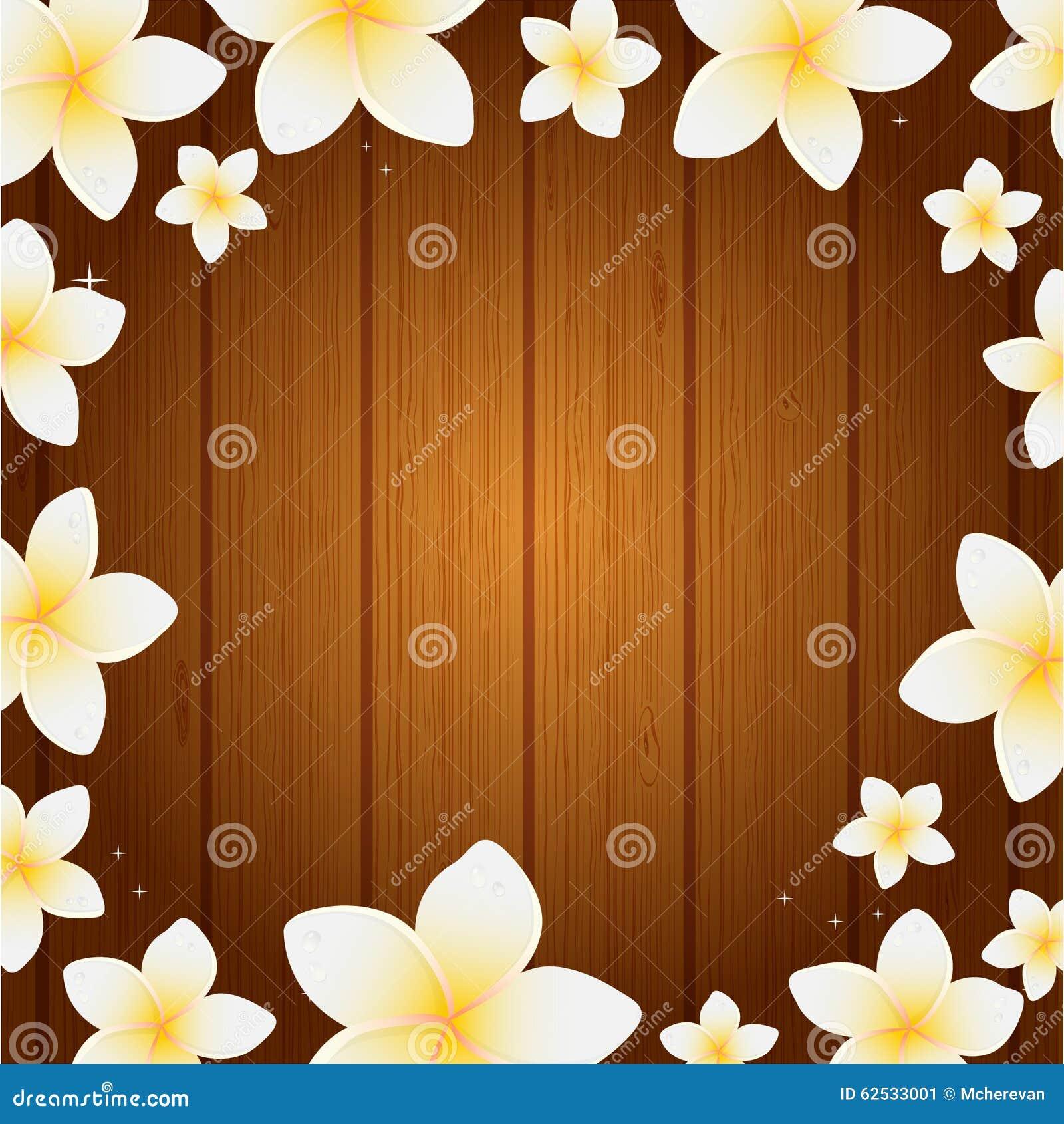 与赤素馨花花的温泉背景