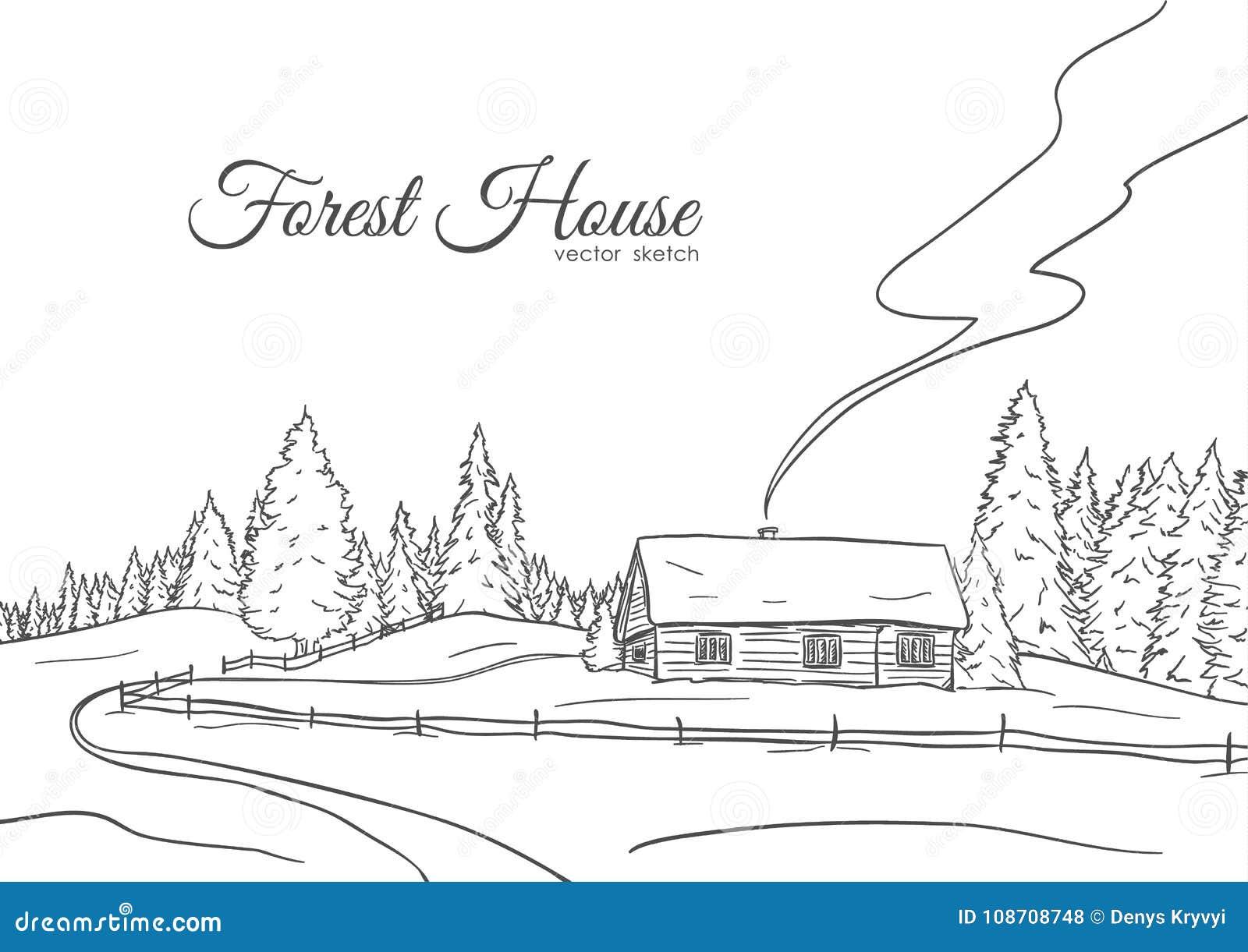 与路安置的和杉木森林剪影线设计的手拉的风景