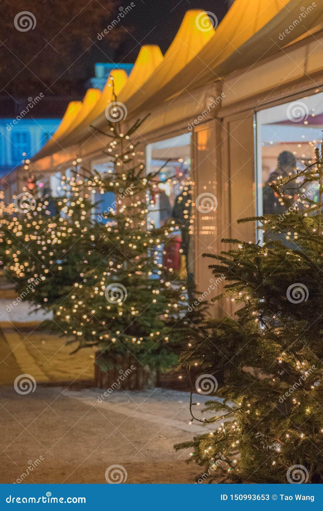 与轻的装饰的圣诞树