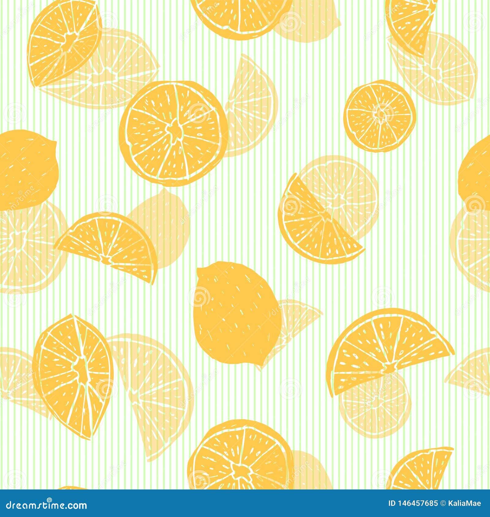 与透明分层堆积的作用的橙色手拉的柑桔剪影对绿色细条纹布料的背景 r