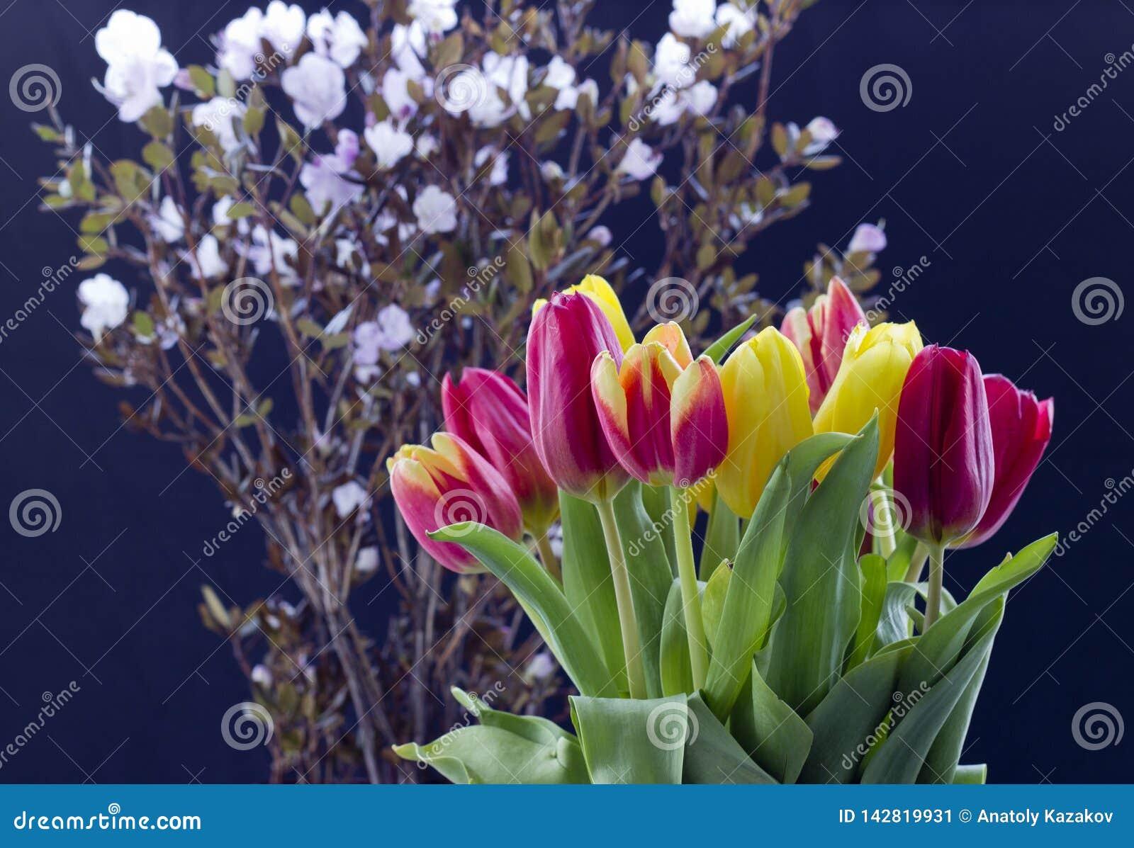 与郁金香的花束