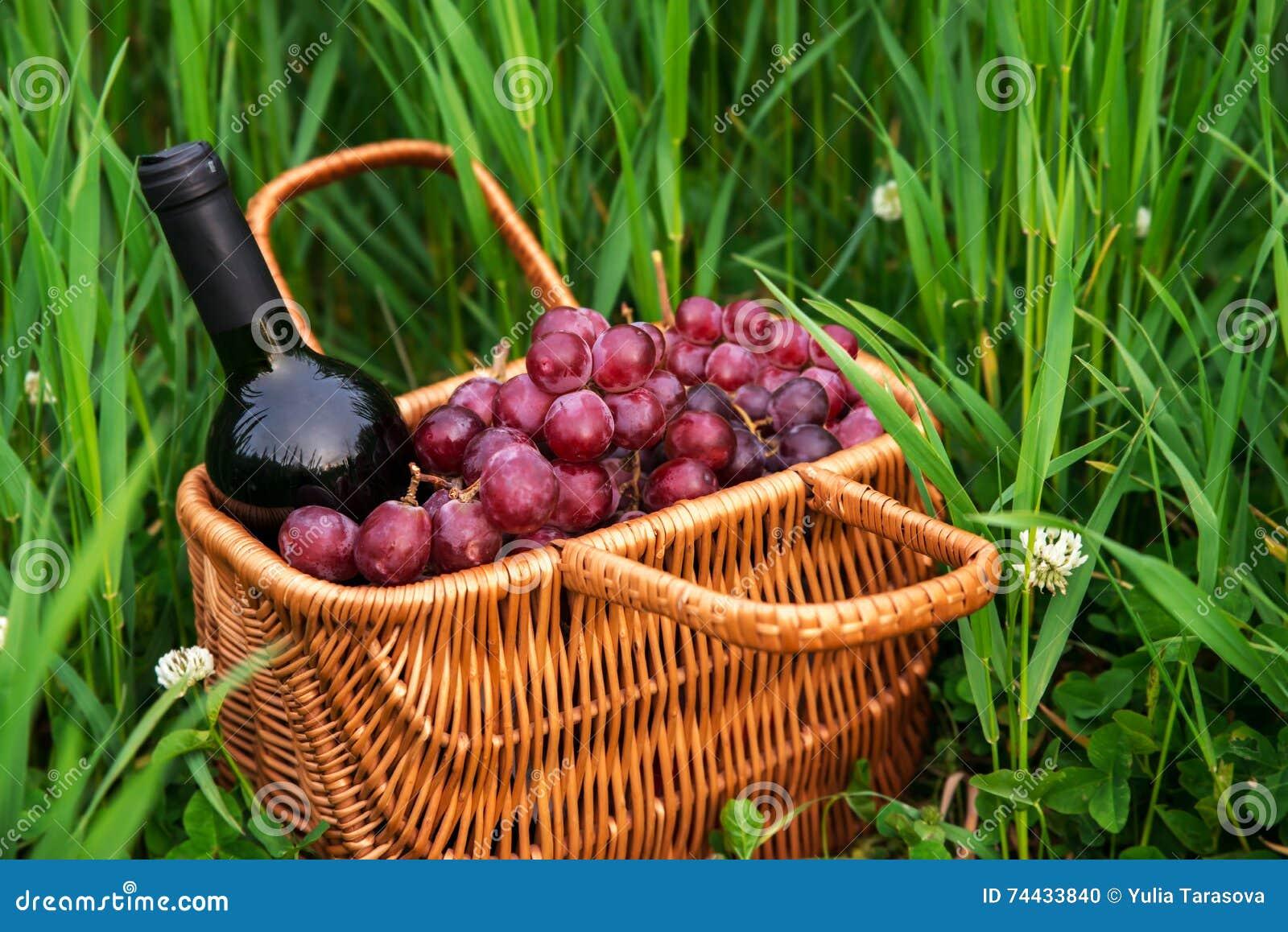 与酒瓶和葡萄的野餐篮子在绿草草坪
