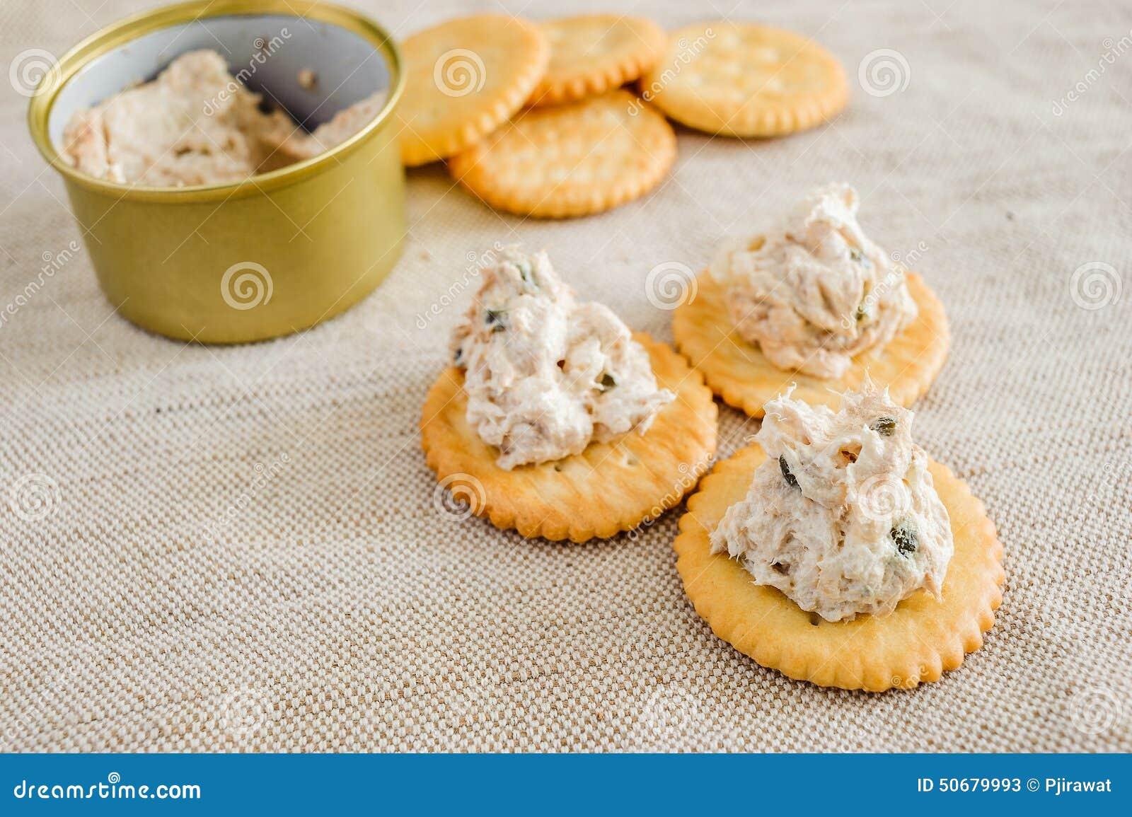 Download 与金枪鱼传播的薄脆饼干 库存图片. 图片 包括有 健康, 朝鲜蓟, 生气勃勃, 蔬菜, 鲜美, 美食, 快餐 - 50679993