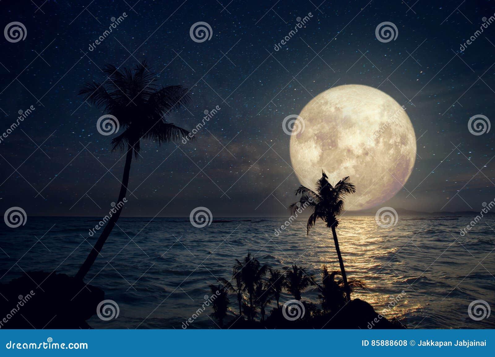 与银河星和满月的美丽的热带海滩在夜空