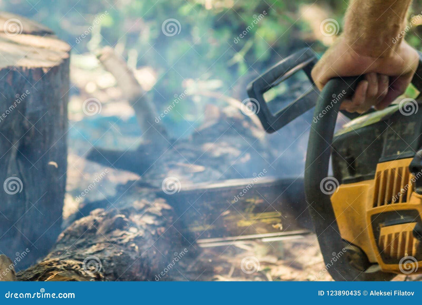 与锯的锯切木头