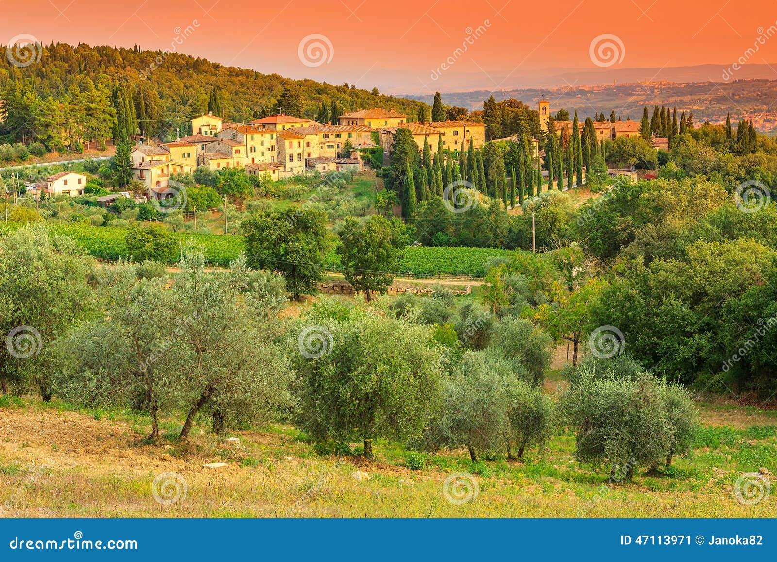 与镇和橄榄树种植园的托斯卡纳风景小山的