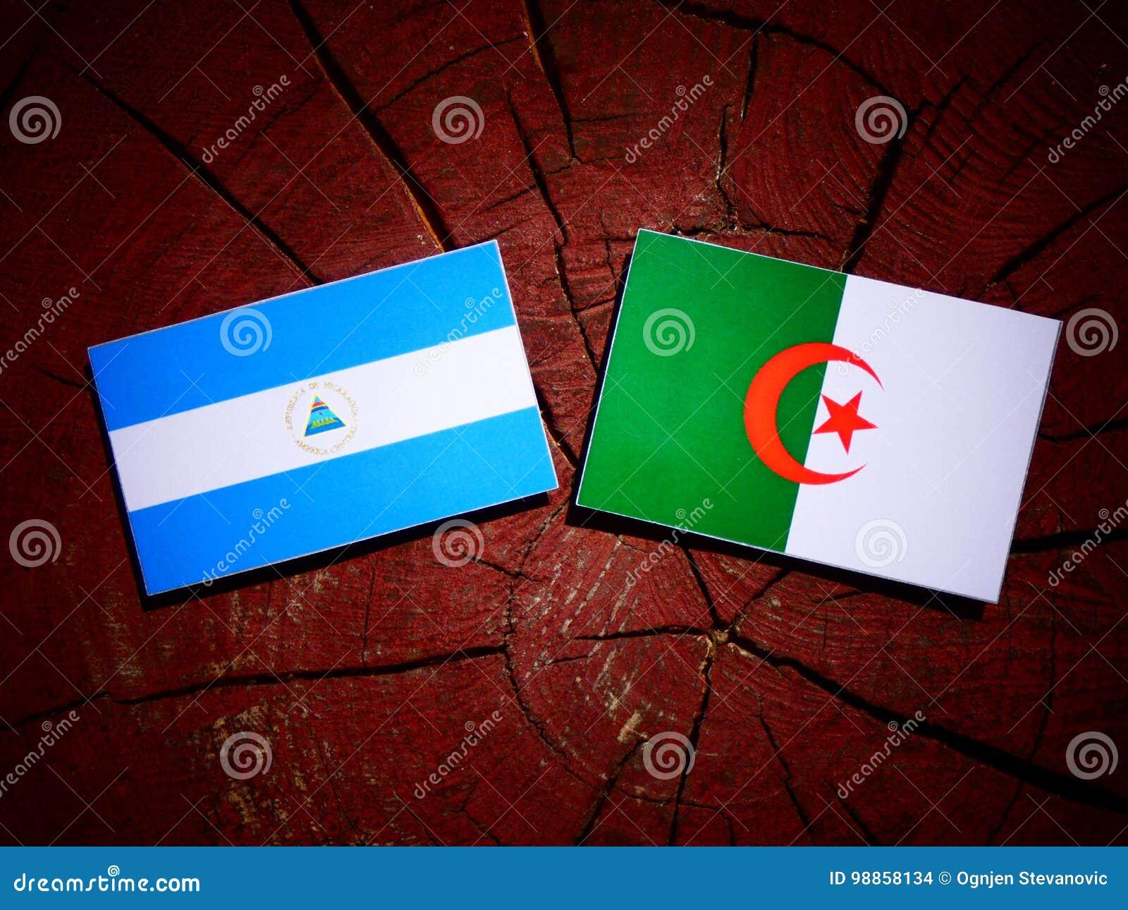 与阿尔及利亚的旗子的尼加拉瓜的旗子在被隔绝的树桩