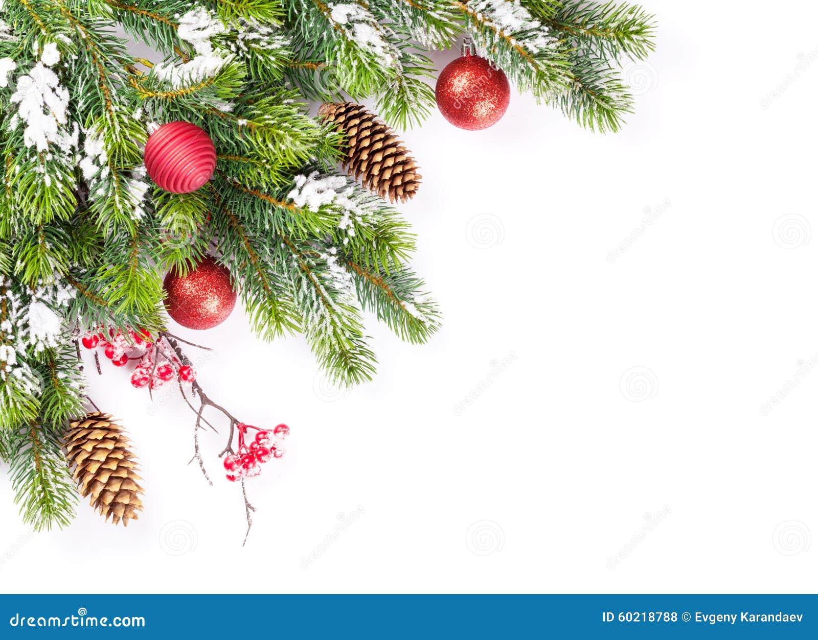 与雪和中看不中用的物品的圣诞树分支
