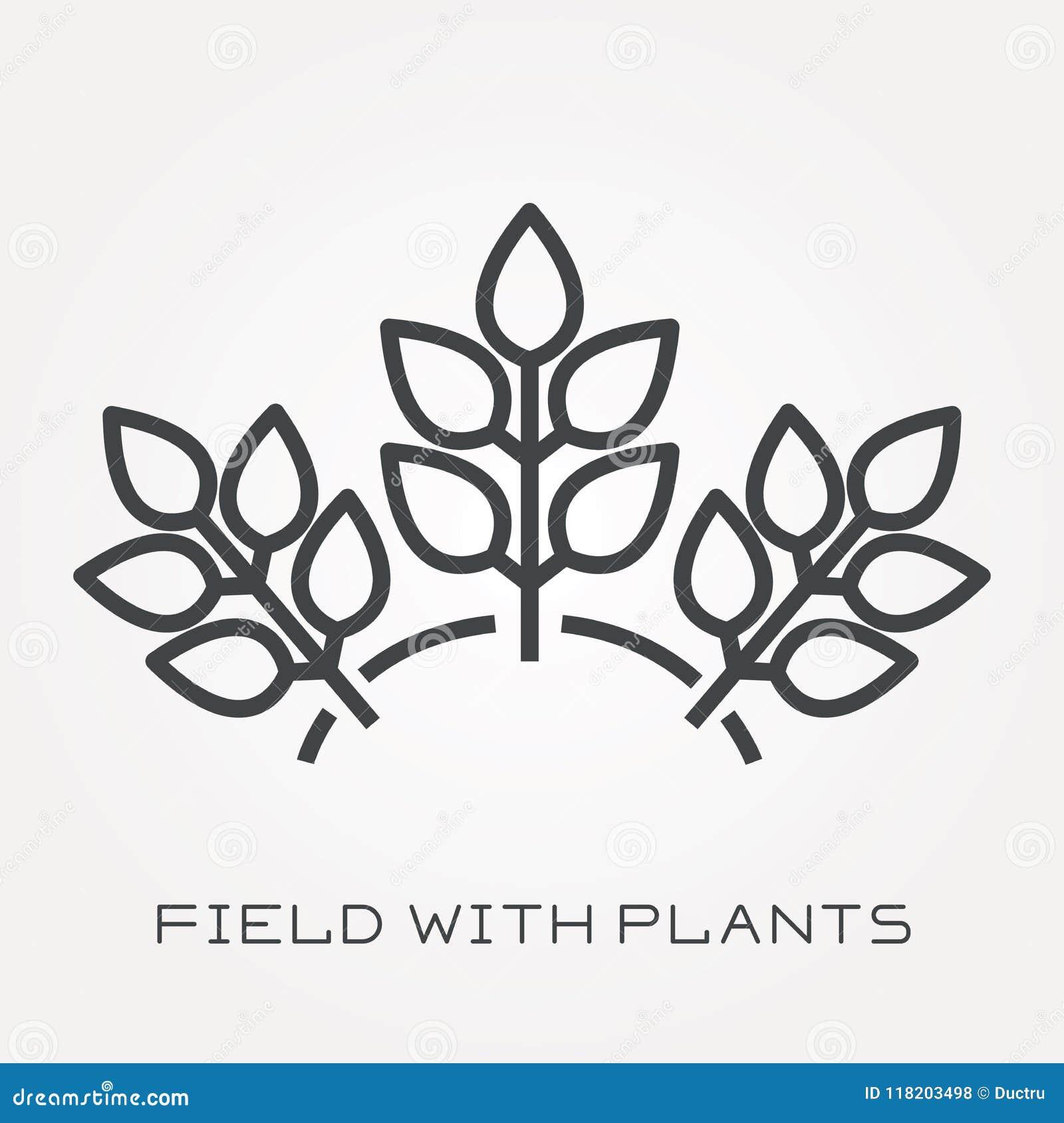与领域的平的传染媒介象与植物
