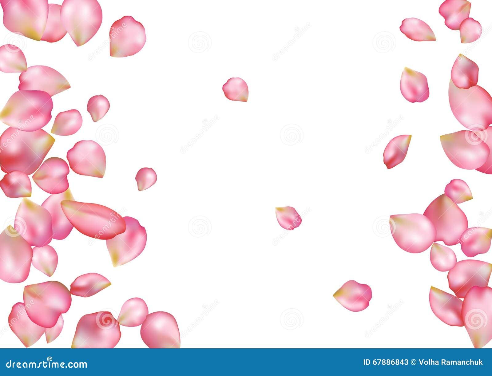 与飞行桃红色玫瑰花瓣的抽象背景