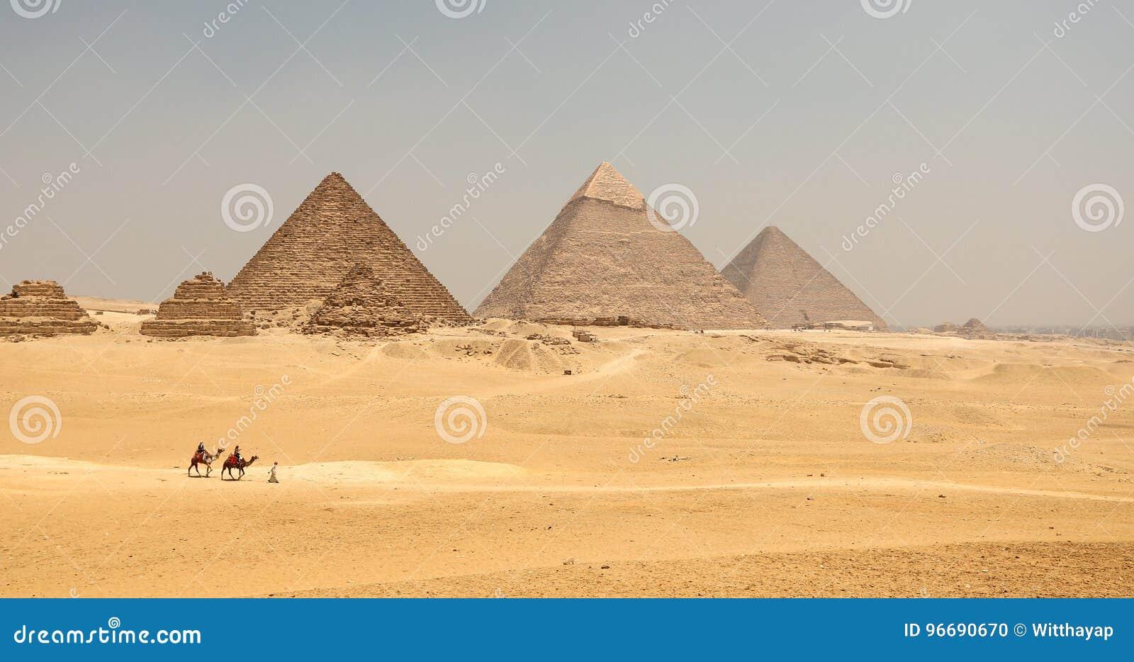 与骆驼的伟大的金字塔