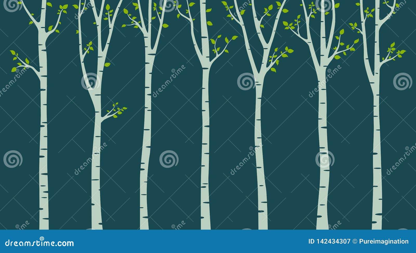 与鸟剪影的桦树在绿色背景