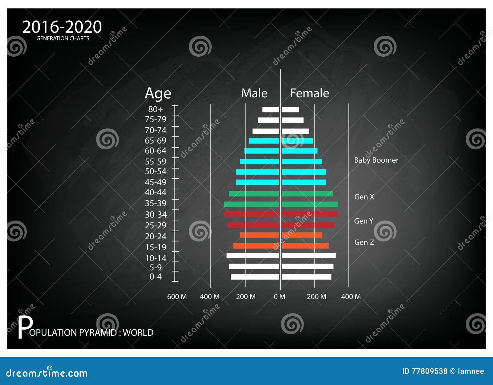 2016-2020与4一代的人口年龄金字塔图表