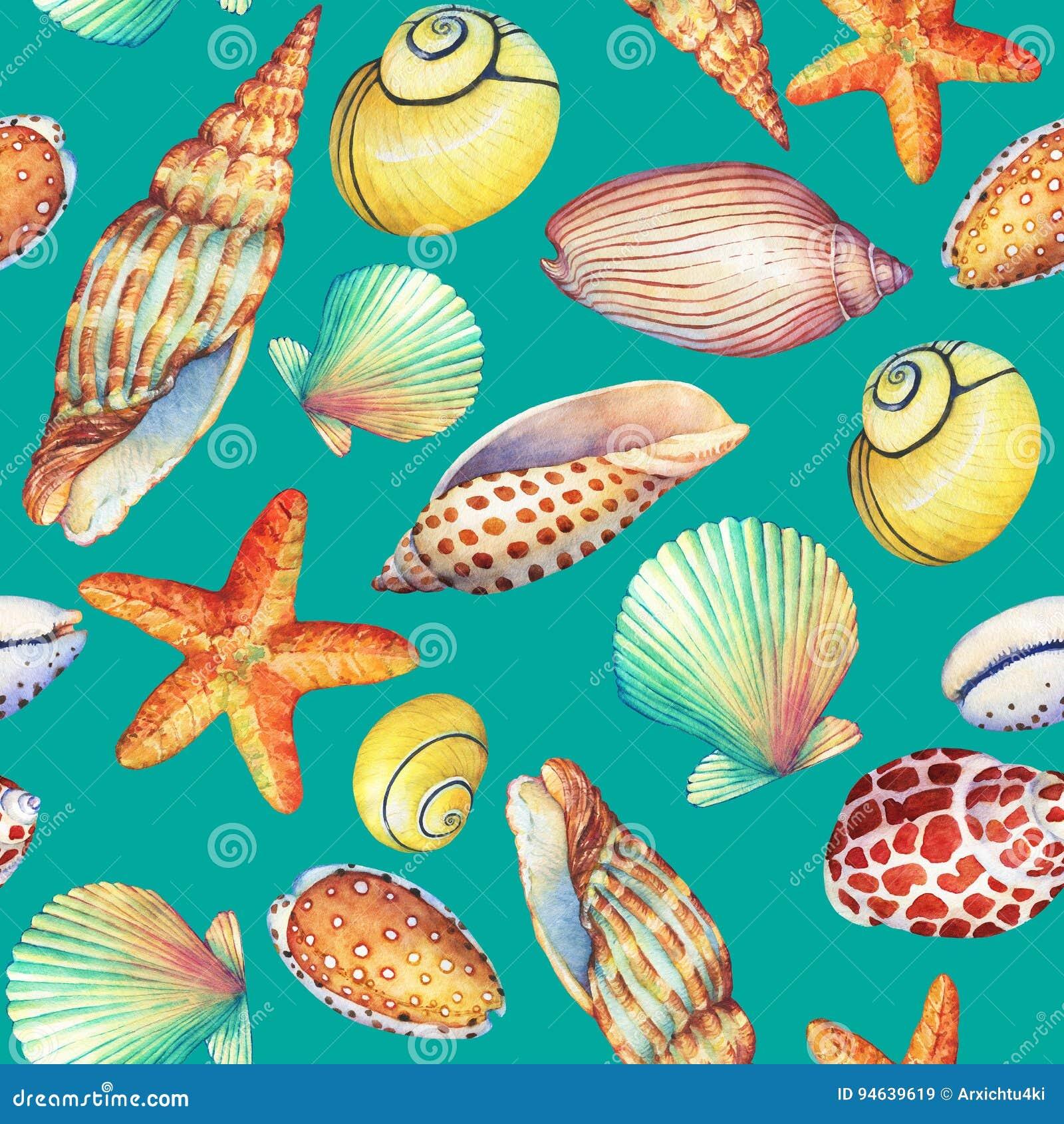 与水下的生活对象的无缝的样式,隔绝在绿松石背景 海洋设计壳,海星 水彩手d