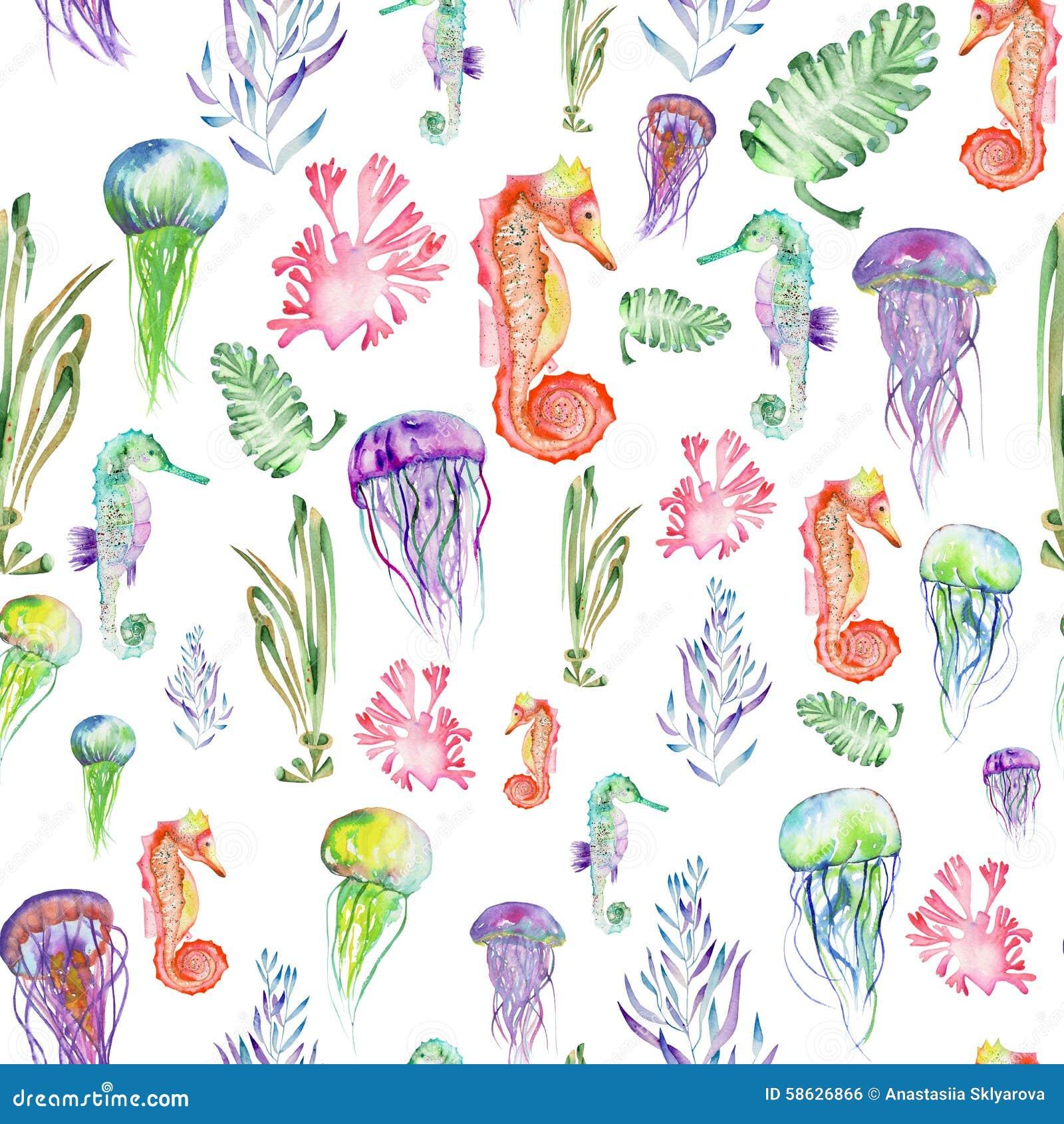 与水彩海象、水母和海草(海藻)的样式