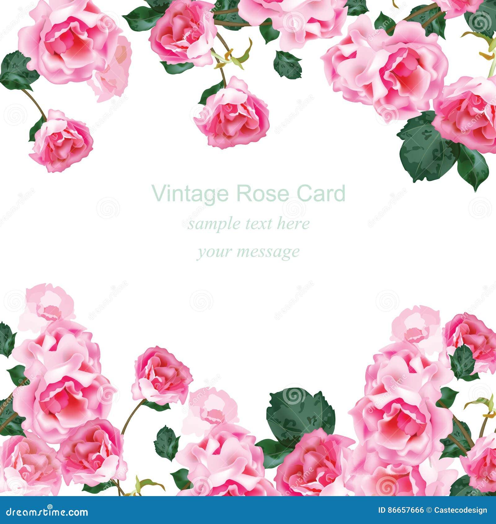 与水彩葡萄酒玫瑰花束传染媒介的邀请卡片 问候的花卉桃红色装饰,婚礼,生日和