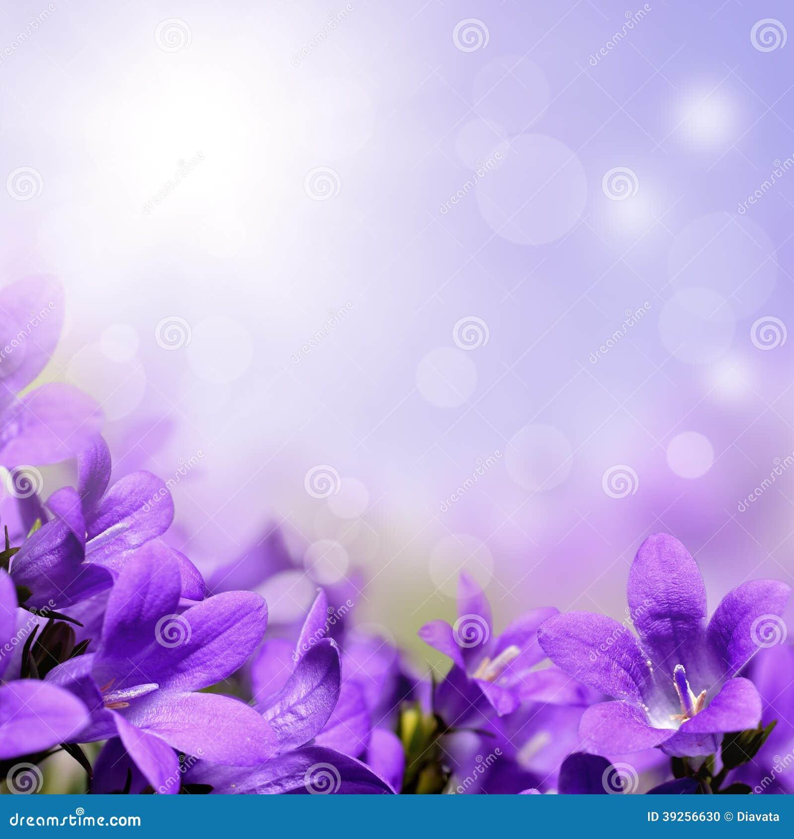 与紫色花的抽象春天背景