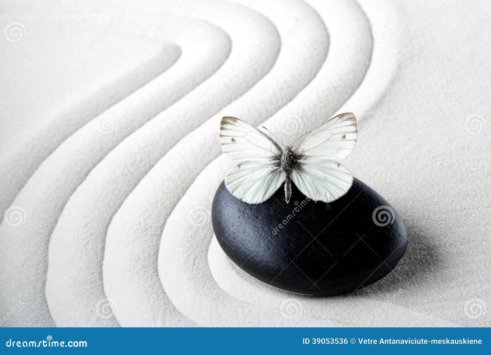 与蝴蝶的禅宗石头