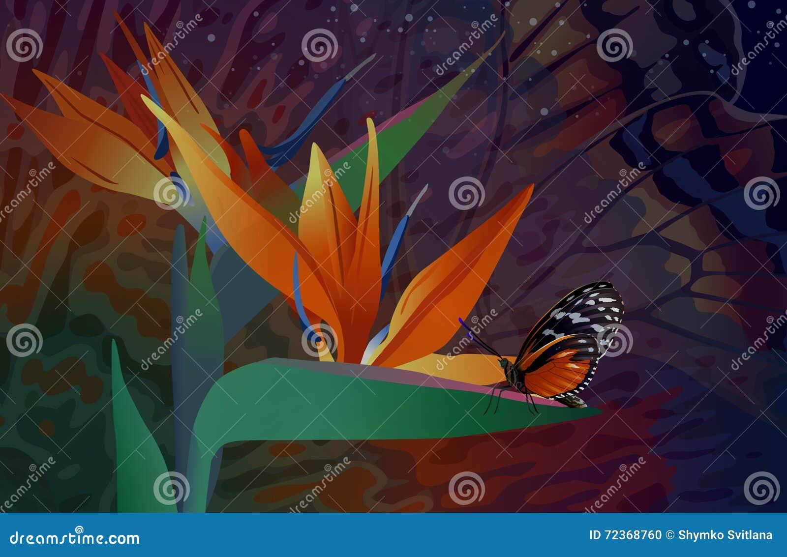 与蝴蝶的野花