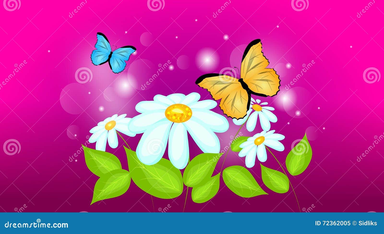 与蝴蝶的雏菊