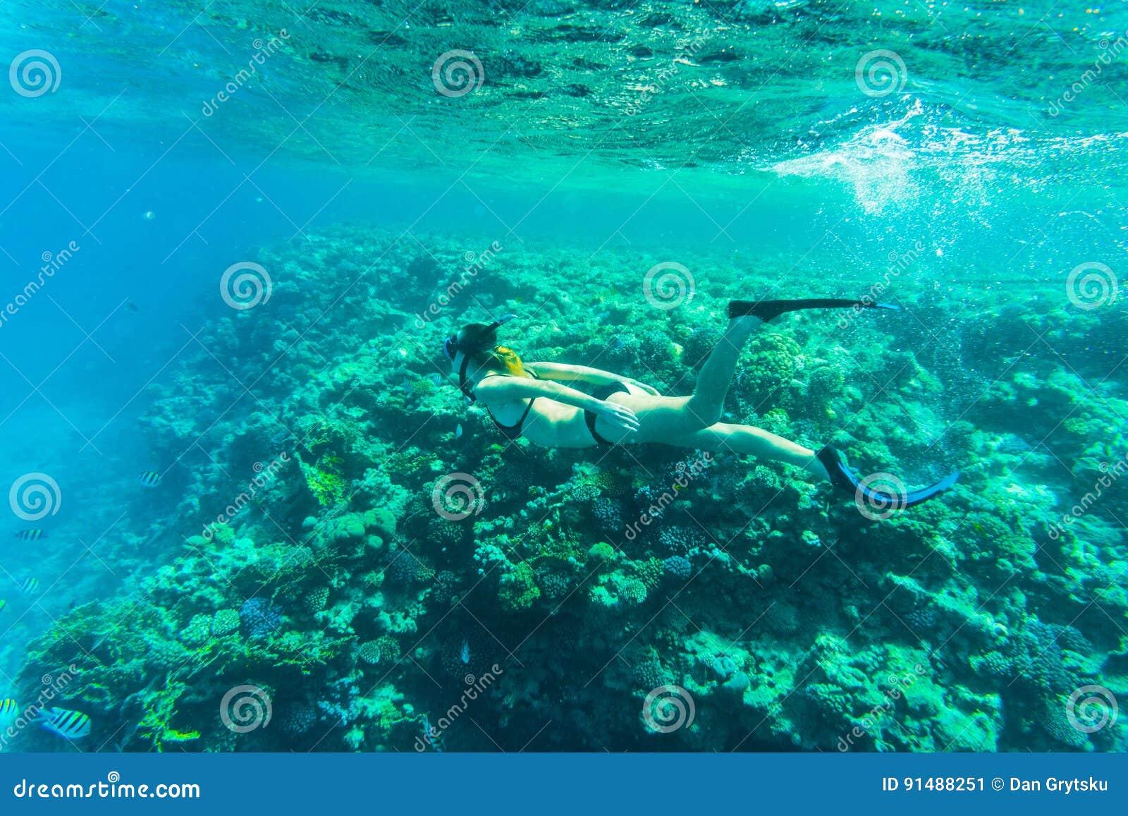 与年轻freediver妇女,水下的生活的美丽的珊瑚礁 文本的Copyspace