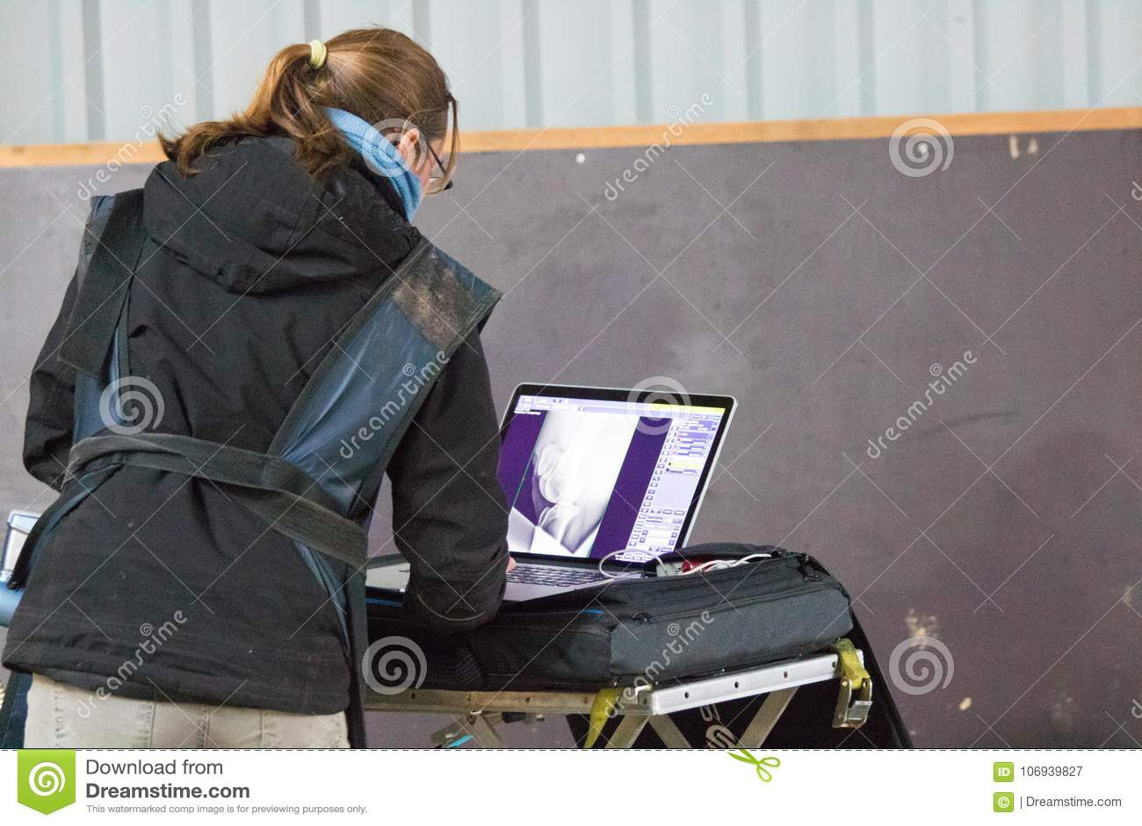 与X-射线的马兽医研究在一匹被致残的马 马能不再走